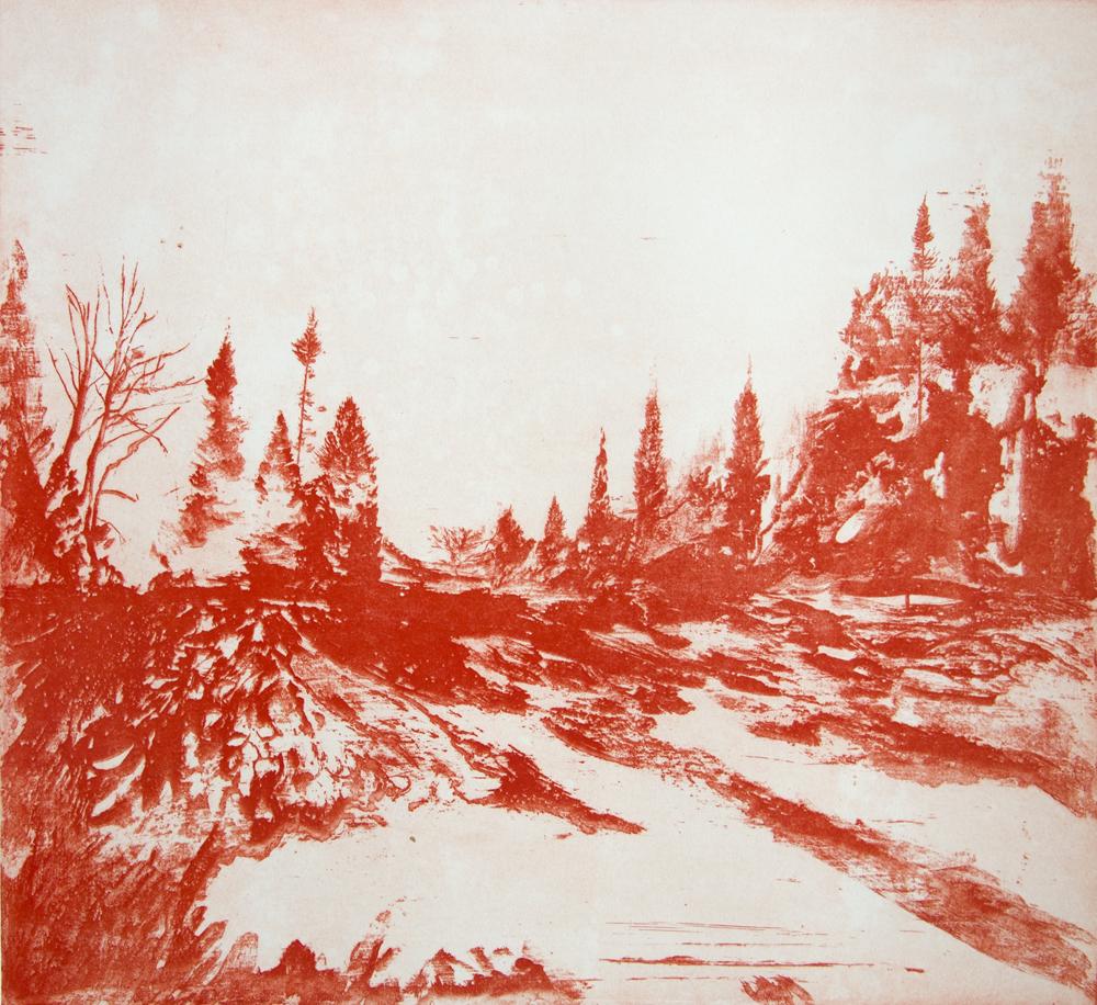 Light Shadows in the Botanics. Etching, 2015, 55 x 59 cm, £650