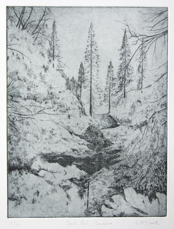 Dark Pool, Benmore, etching, 2015, 33 x 25 cm, £400