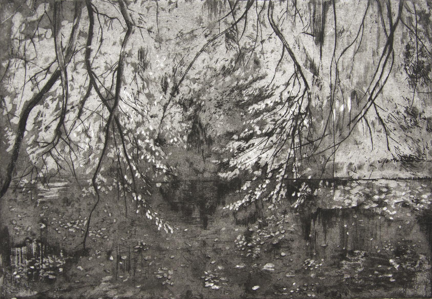 Katsura, Benmore, etching, 2015, 17 x 25 cm, £350