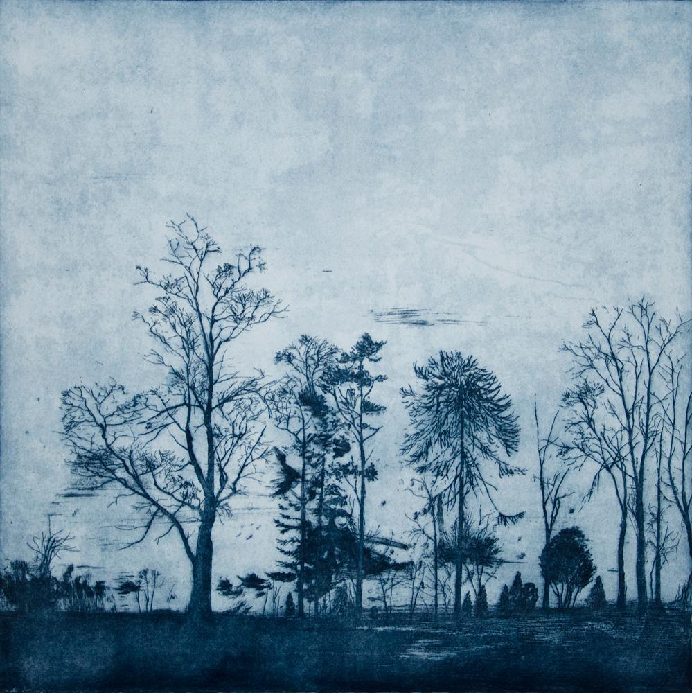 Nocturne, The Glen, etching, 2015, 55 x 60 cm £700
