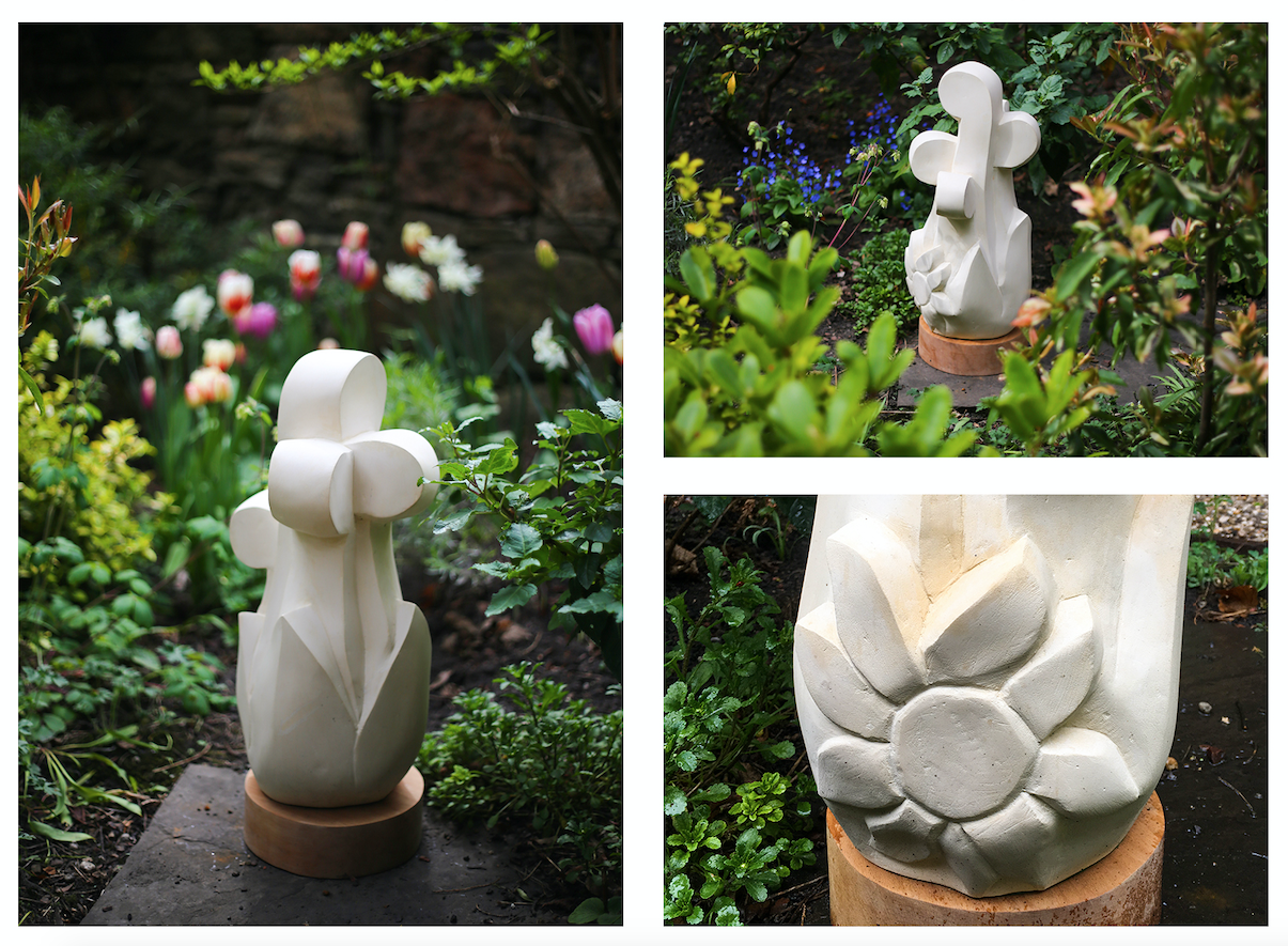 """Plant(s) of the Month – May Fiddlehead Fern AKA the Ostrich fern (Matteuccia struthiopteris) and Daffodil (Narcissus)   Represented in the Geddes Garden this month (and next) by the kind loan of Tom Allan's sculpture """"Plant form"""" which is carved in limestone on a wooden plinth. Fiddlehead ferns are those genera of ferns which have been traditionally cooked and eaten as a vegetable and which I first encountered in Canada when their appearance marking a welcome sign that the hard Winter was ending and the (brief) Spring was springing.  Tom's sculpture (which is on sale for £650 – just enquire at the bar) also incorporates a daffodil flower. Daffodils (one of the common names of the genus Narcissus) are technically perennial herbaceous bulbiferous geophytes which die back after flowering to an underground storage bulb. Although a little late for the hot weather which we have just enjoyed, Gerard's Herball (1636) counsels that the bulb of the daffodil, """"[…] applied with hony and nettle seed helpeth Sun burning.""""  However, as always, beware because as Wikipedia cautions, """"Many cases of poisoning or death have occurred when narcissi bulbs have been mistaken for leeks or onions and cooked and eaten"""" – so please leave them just where they are in the garden!"""