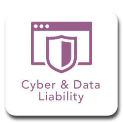 Cyber _ Data Liability.png