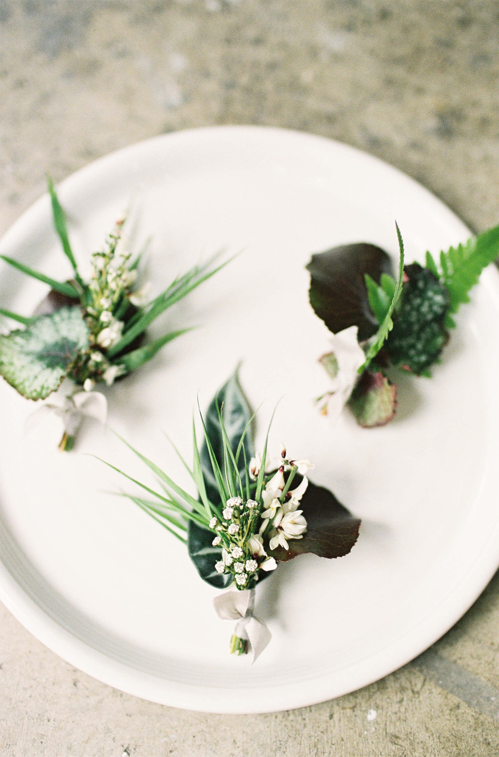 0.5 inch Dusty Miller for the boutonnières  As featured on   Once Wed    Photography   Maritha Mae  , Boutonnières   Bloomen