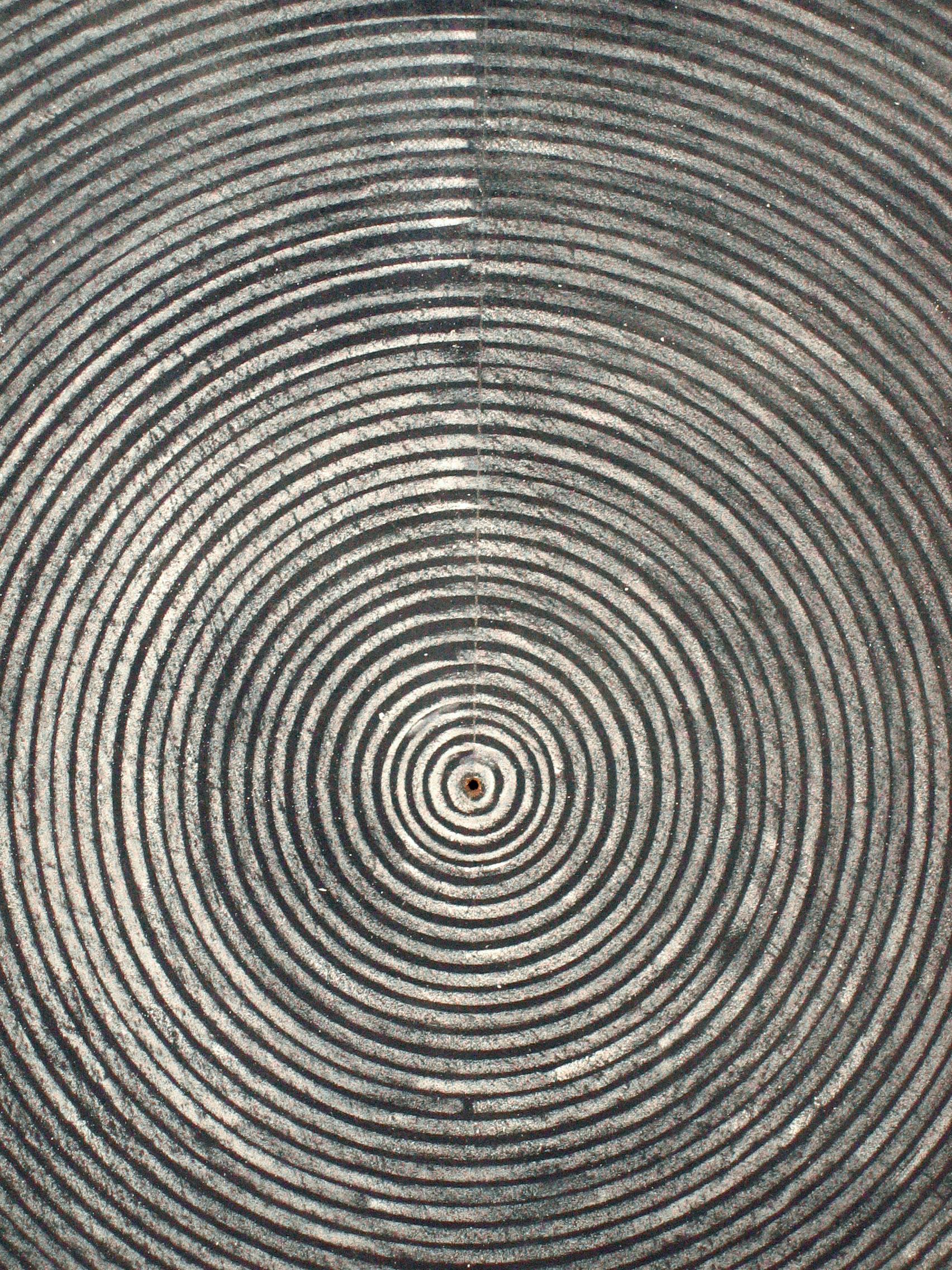"Still  (detail) 2005 chalk and acrylic on board 48 x 48"" / 122 x 122 cm"