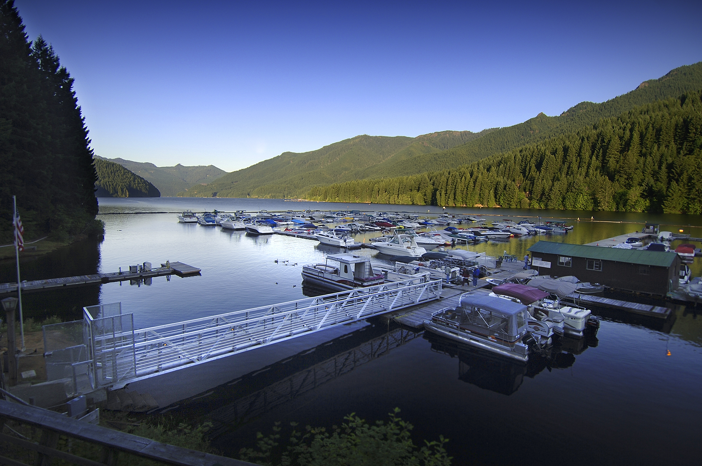 Morning dock.jpg