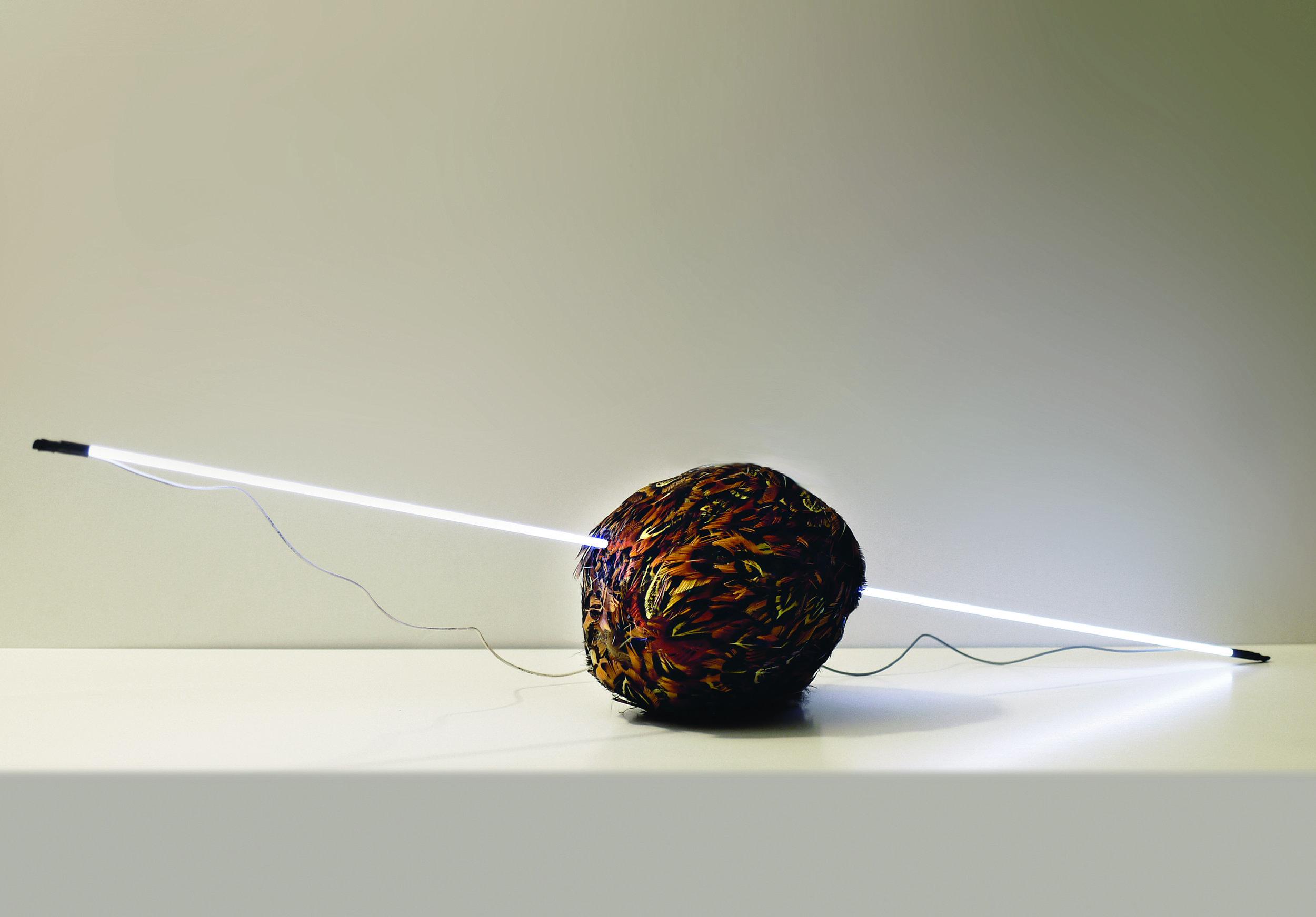 La relatividad del error - Cacería 1.jpg