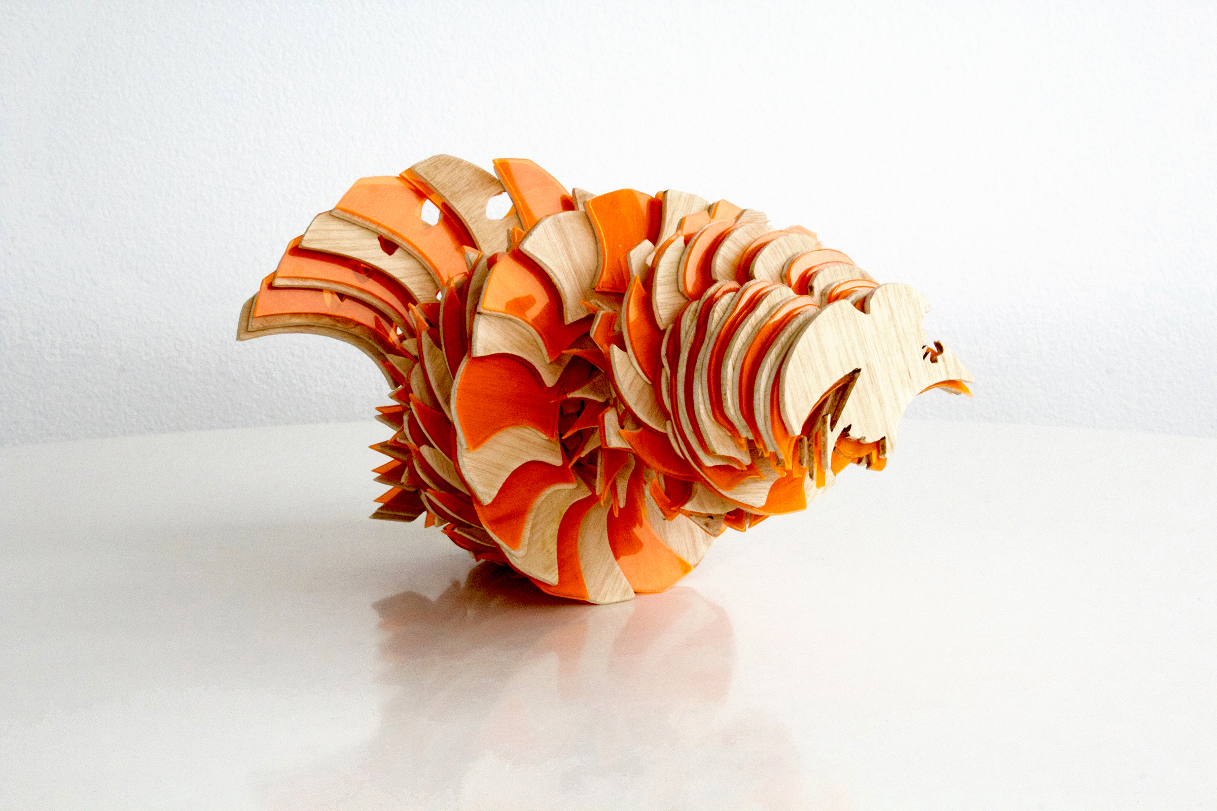 LAPSUS TROPICUS naranja.jpg