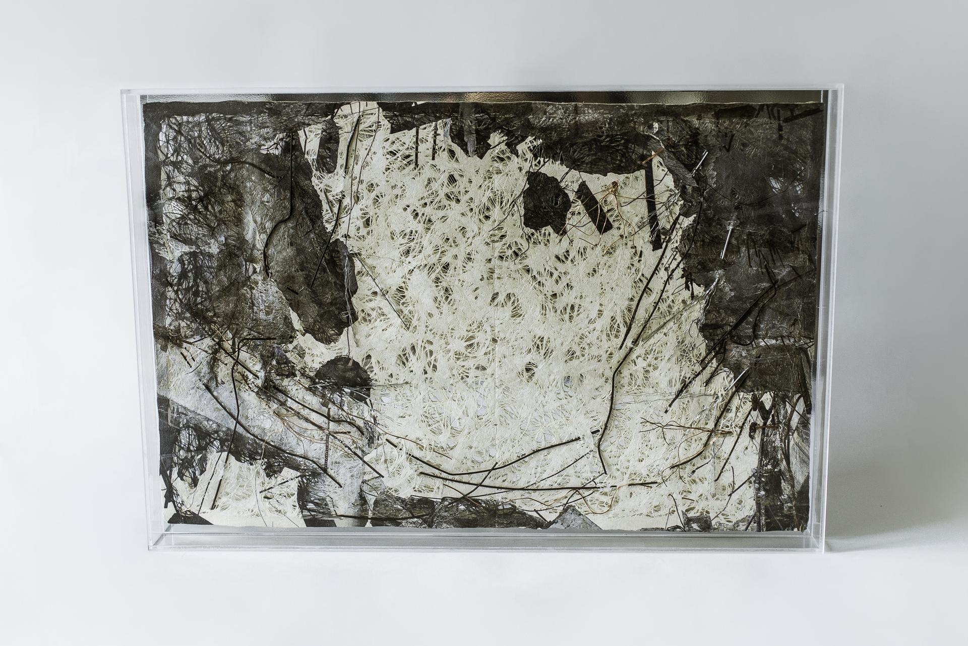 S.T (2018) - 42 x 62 x 4 cm - Acrílico, impresión sobre papel hecho a mano y alambre/ Plexiglass, print on handmade paper and wires
