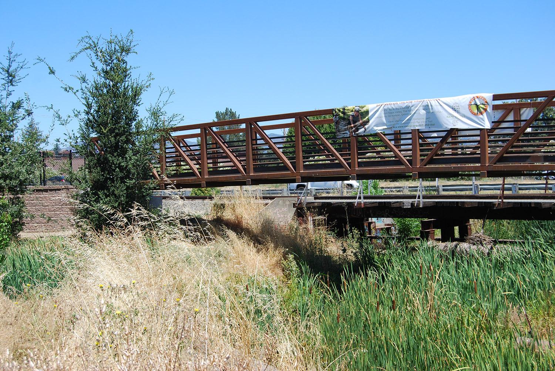Nielson_Salvadore Ch Bridge_1.1.jpg