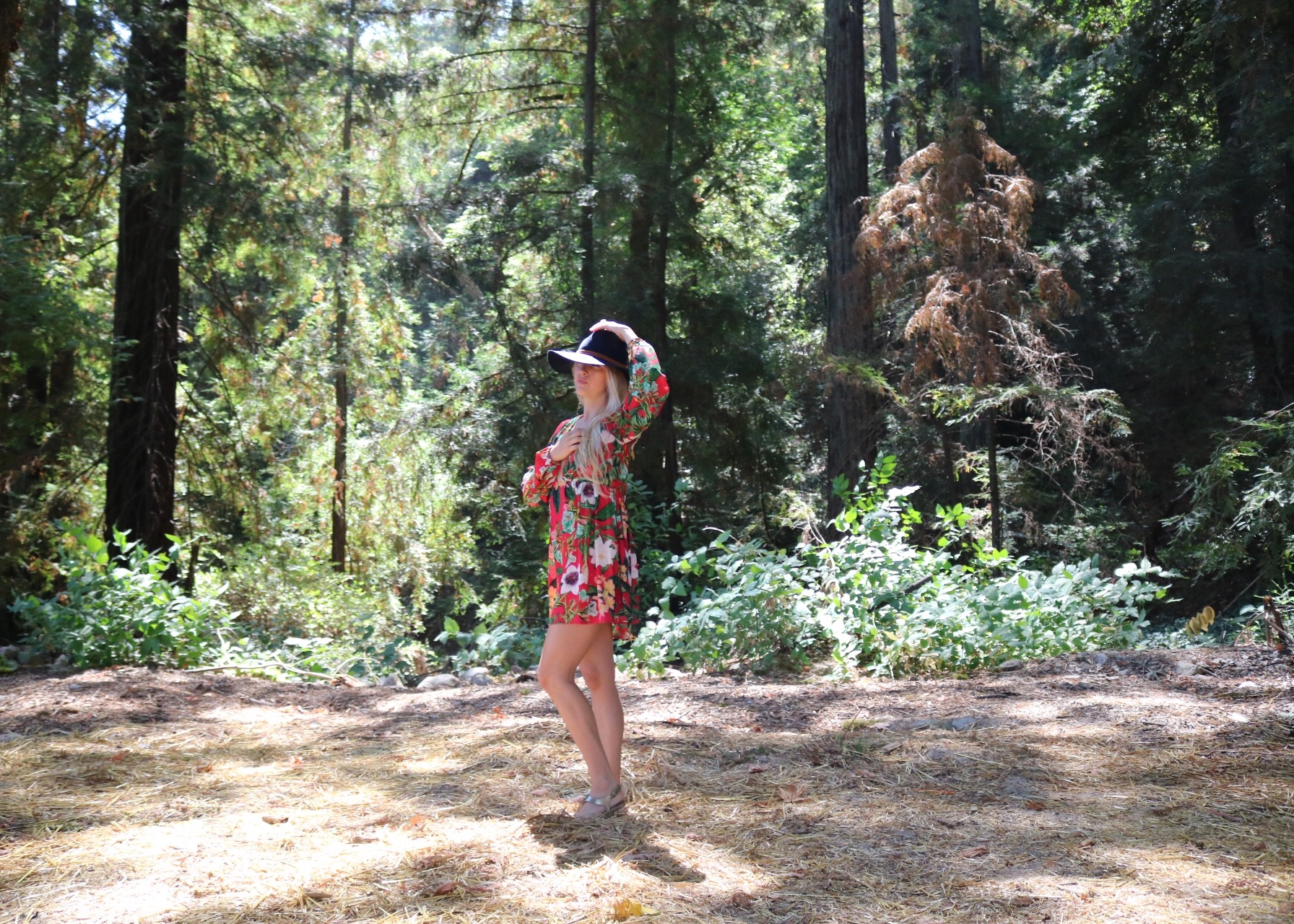 Love frolicking the Forest in my Lady Bird hat, and Show Me Your Mumu dress!