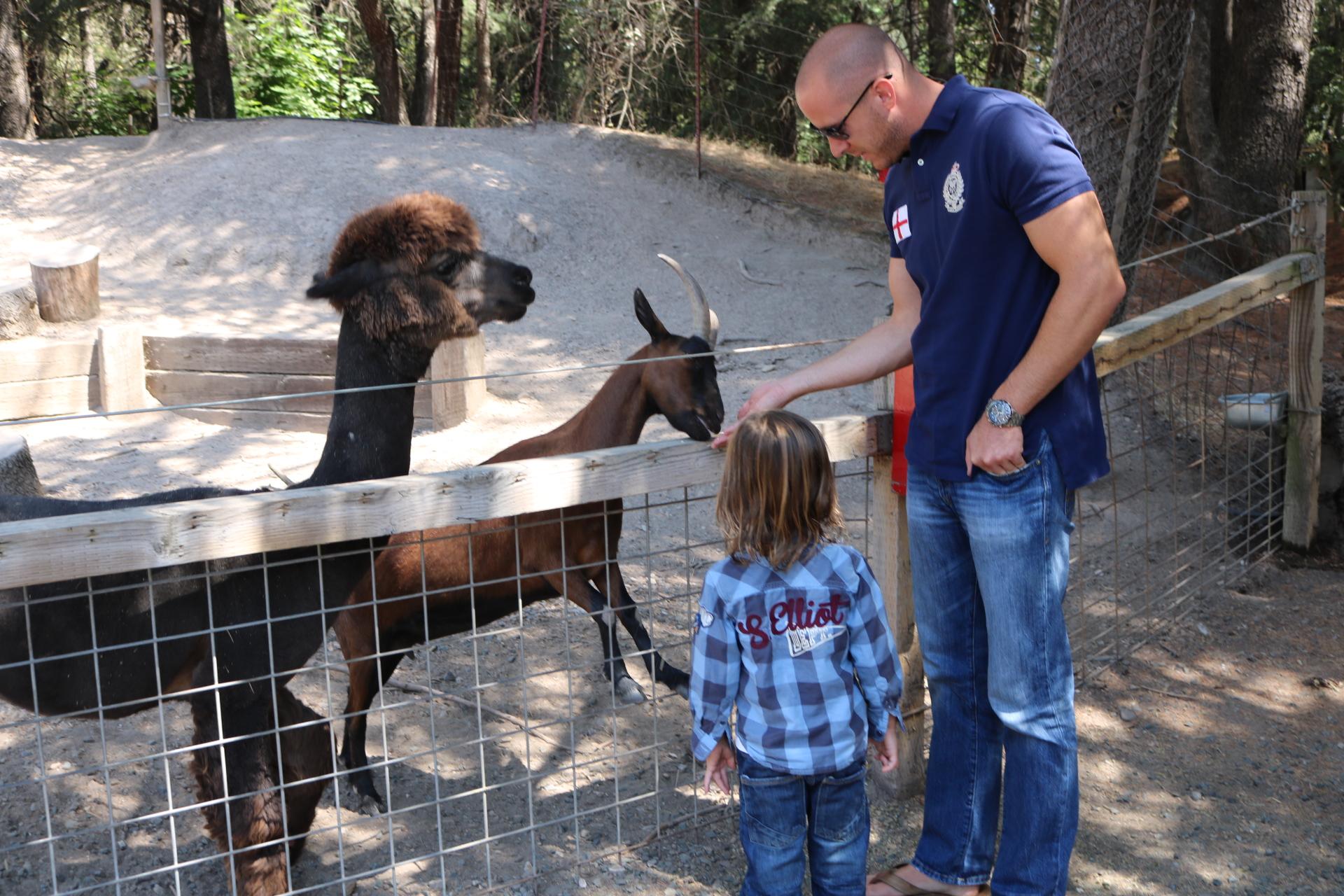 The petting zoo!