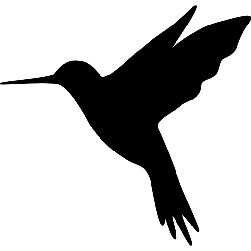 Hummingbird Meditation -