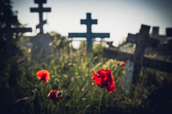 The most cosmopolitan cemetery, Sulina, 2017