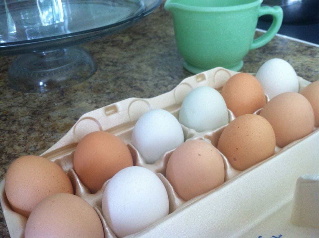 What makes eggs different colors