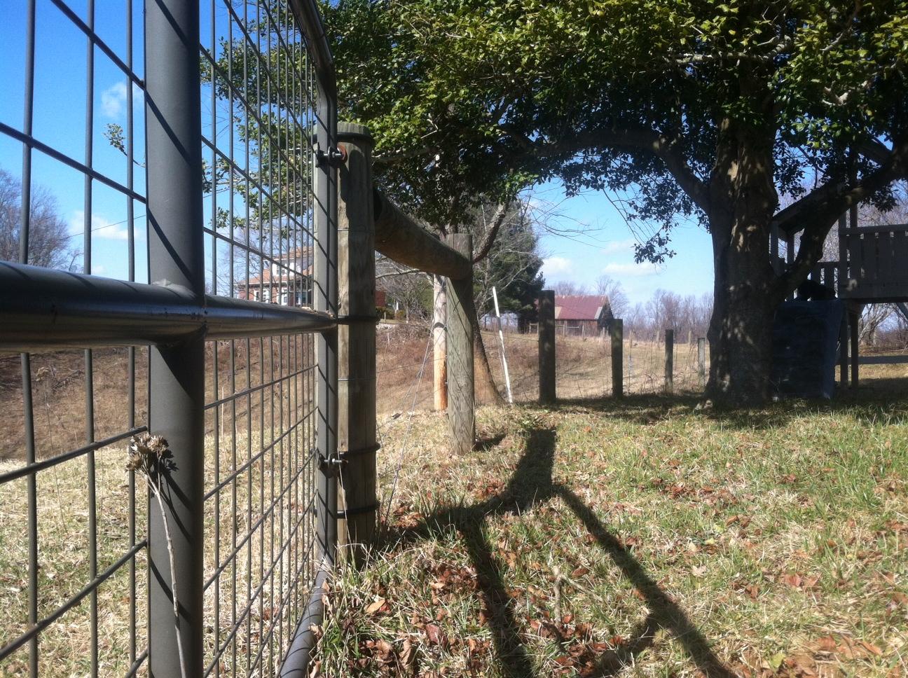 monnett-farms-fence.JPG