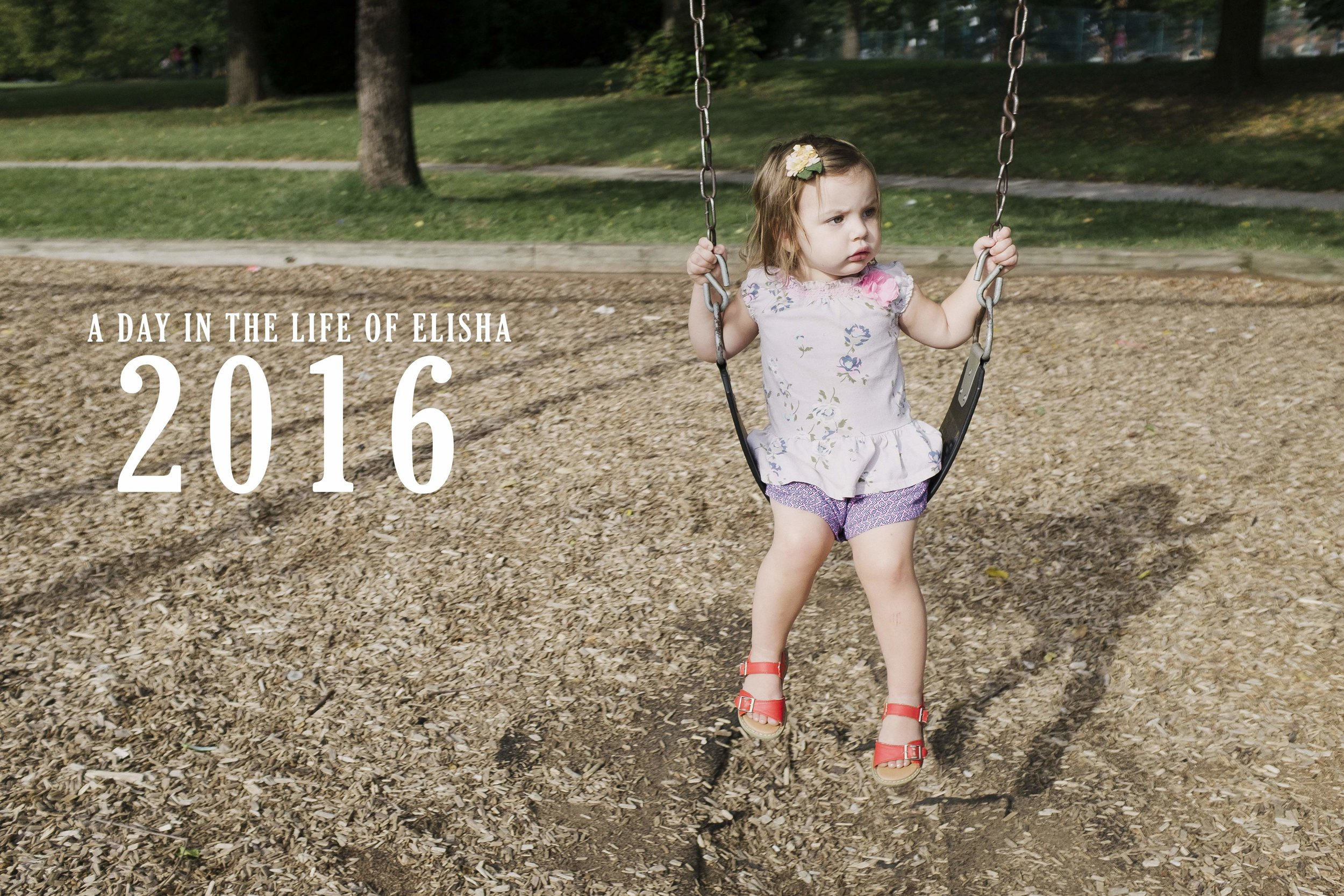 Day in the Life 2016