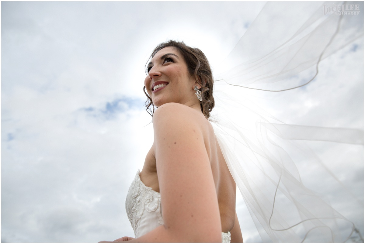 District Winery Fall DC wedding bride with veil.JPG