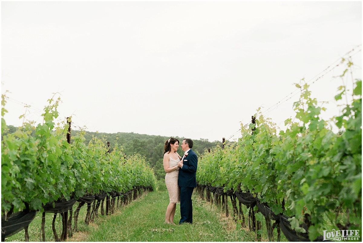 Stone-Tower-Winery-VA-Wedding_0017.jpg