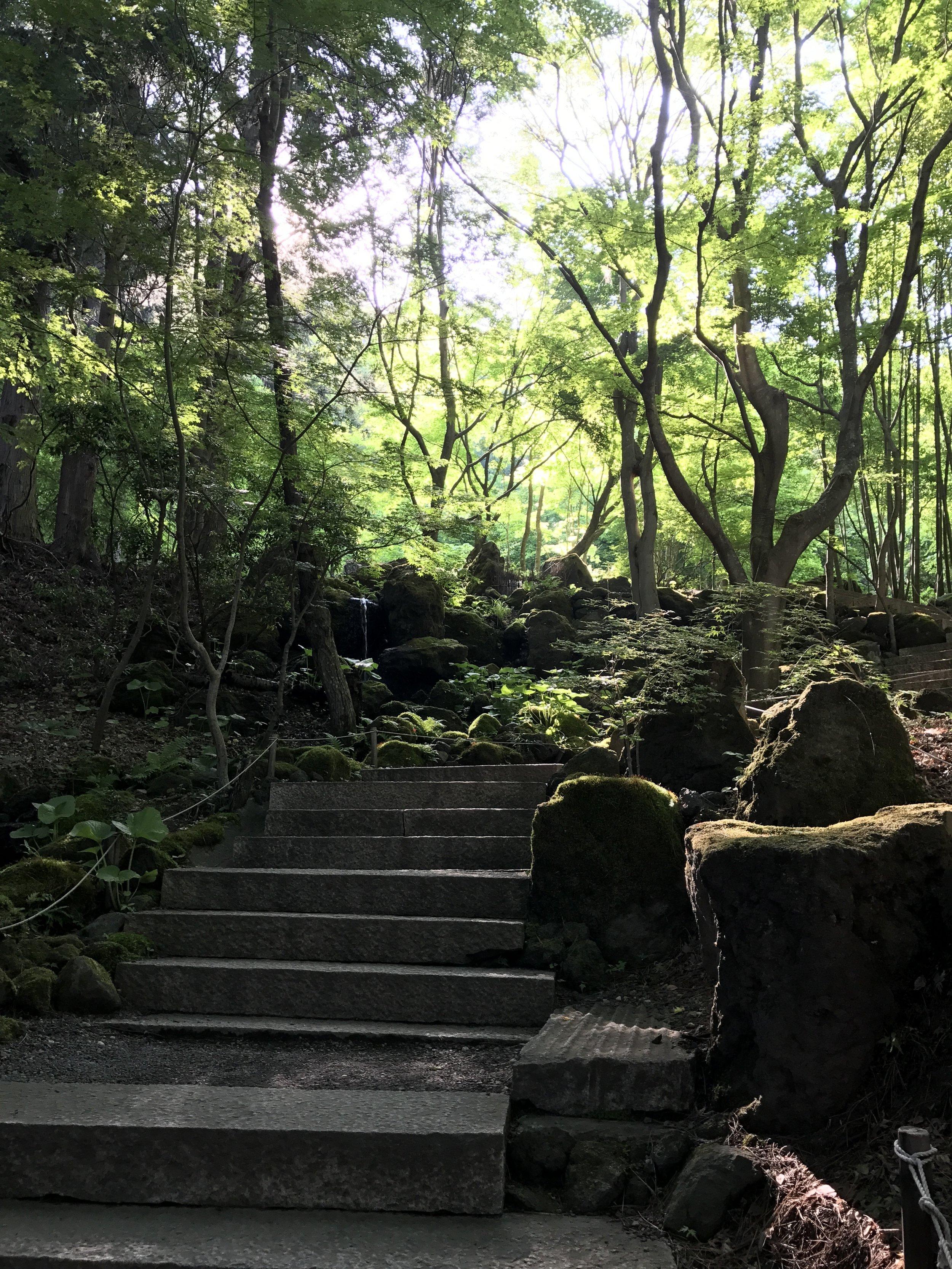 Garden at Kubota Museum