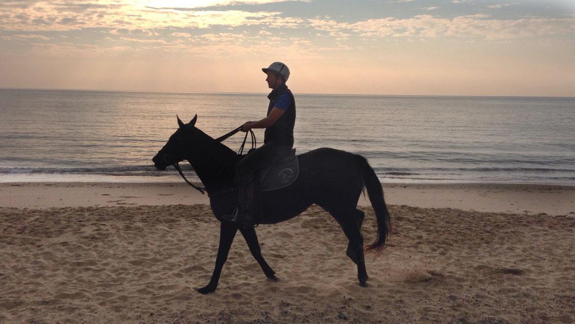 Horse_beach.jpg