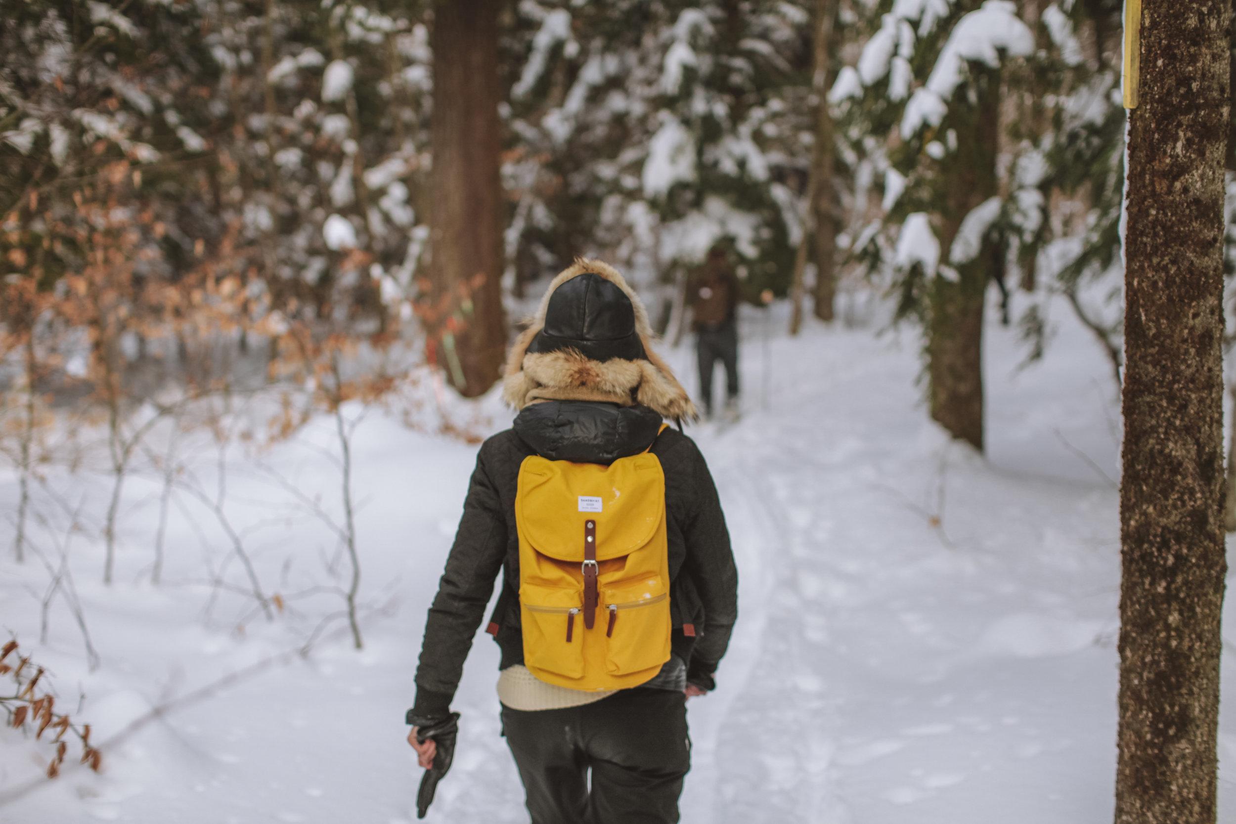 snowshoeing-20.jpg
