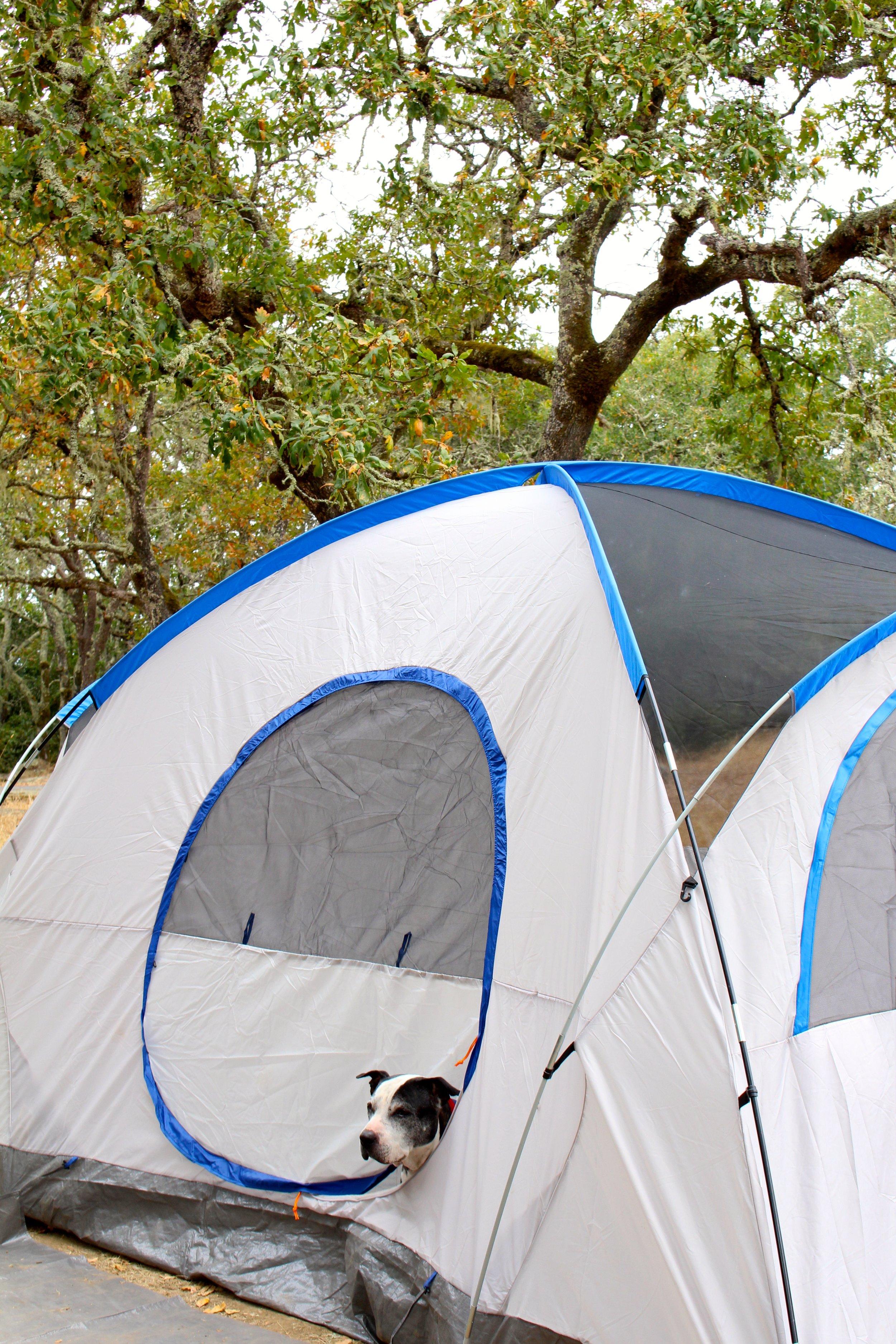 Santa_Rosa_Camping
