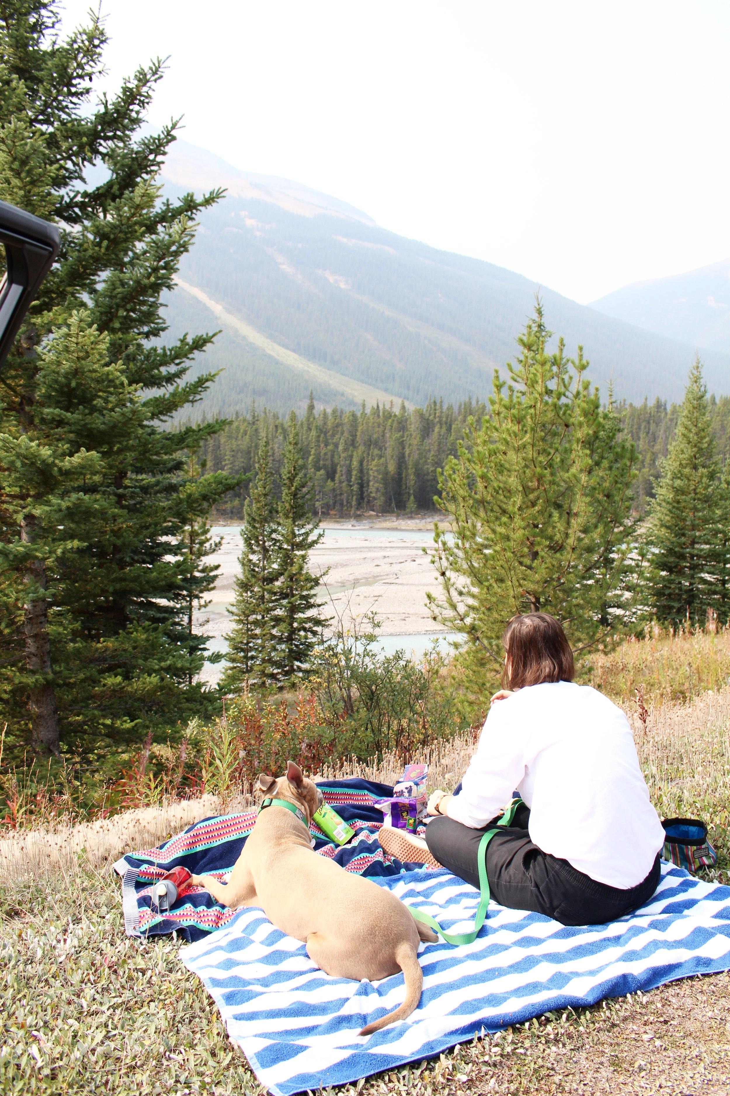 Banff_Picnic
