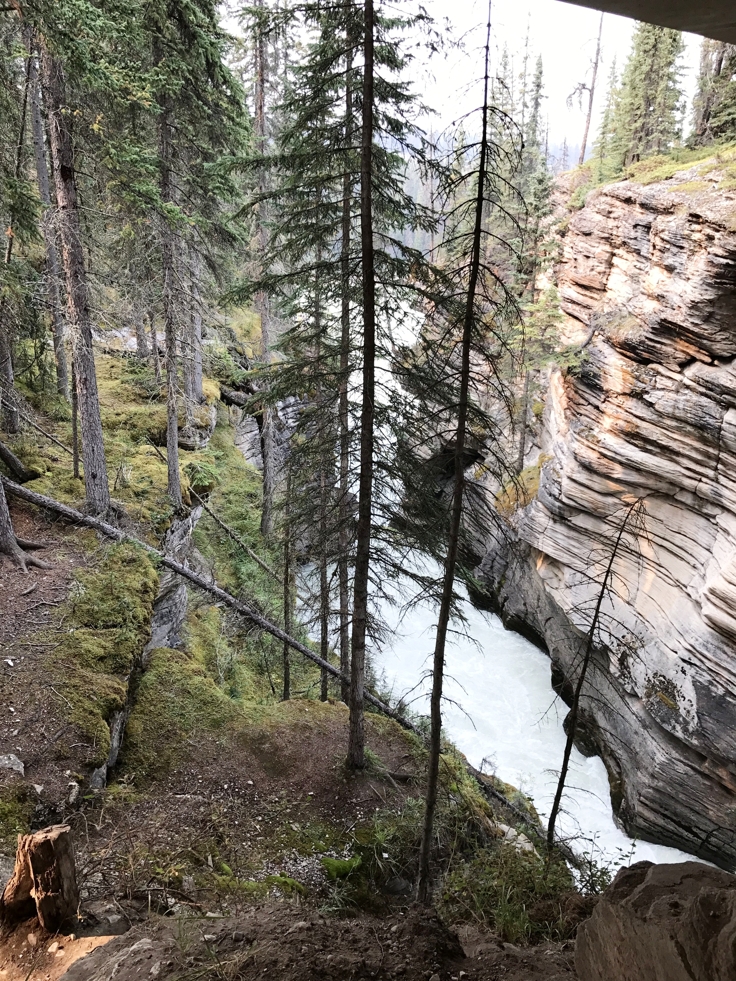 Athabasca_Falls_River