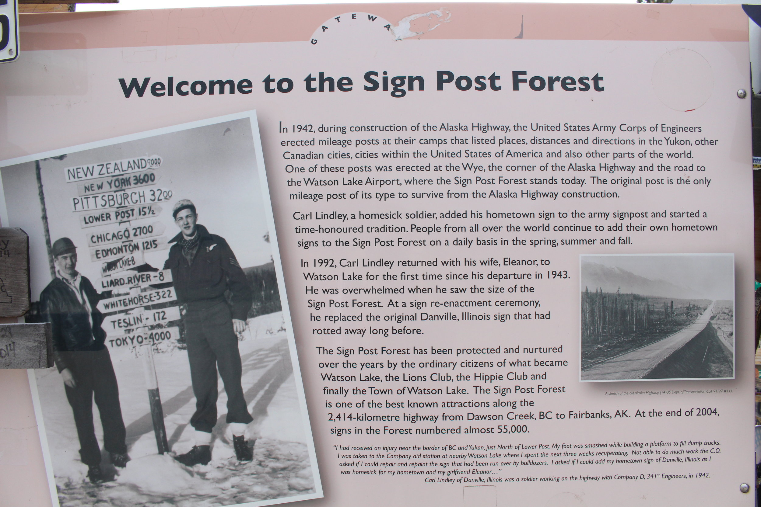 Signpost_Forest