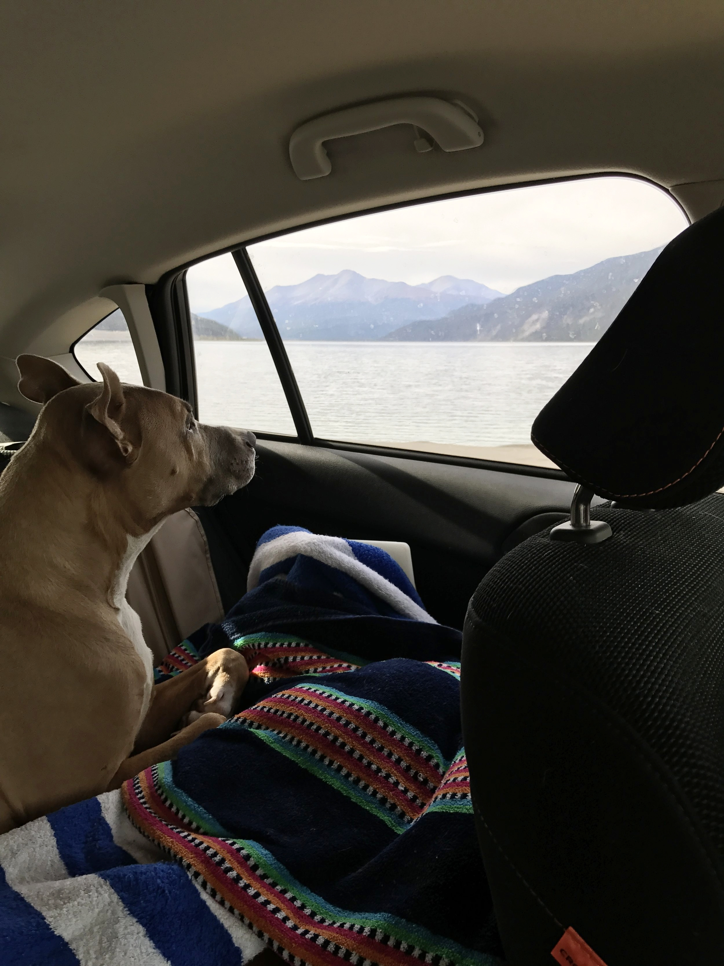 Muncho_Lake_Car_Ride