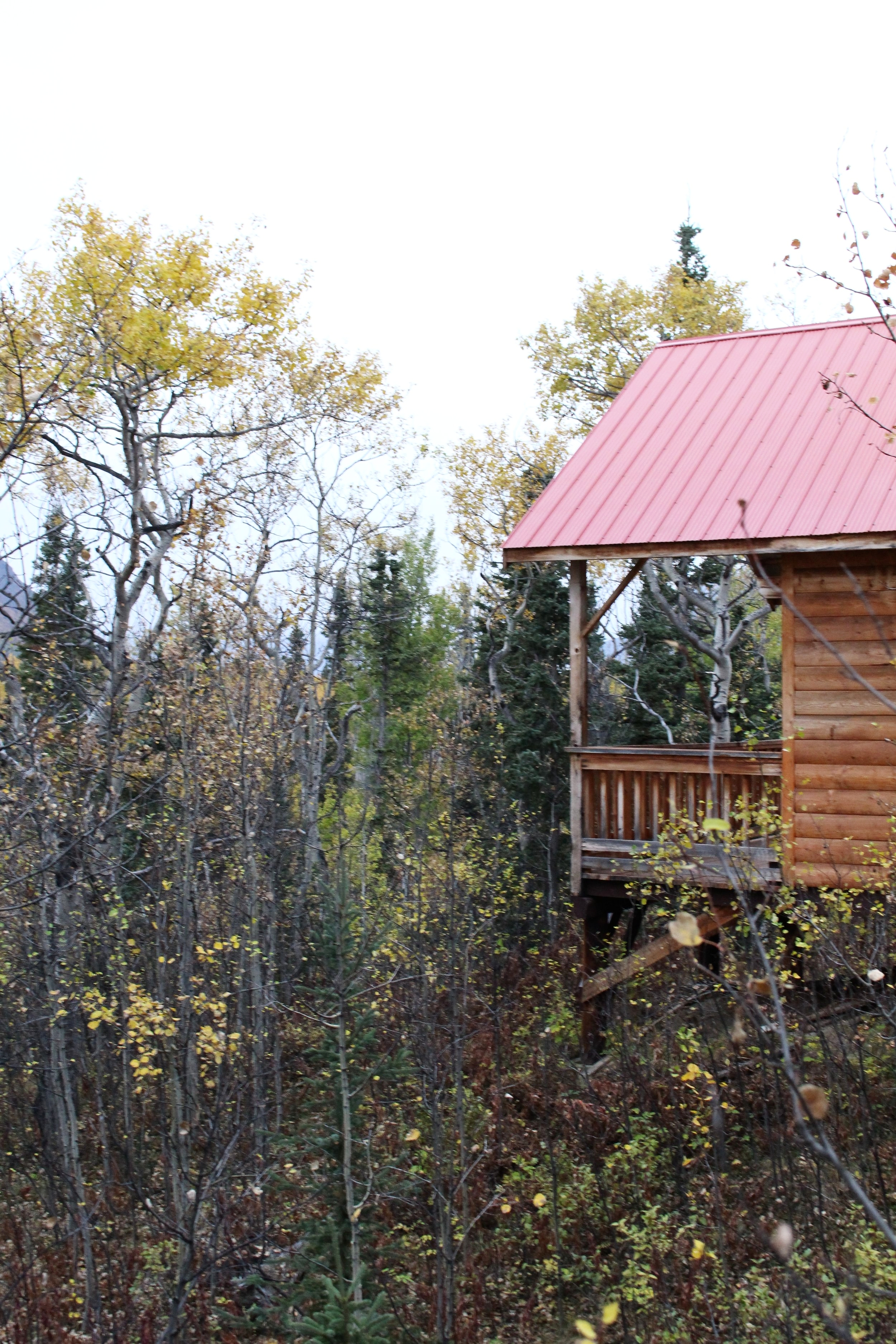 The_Cabin_Haines_Junction