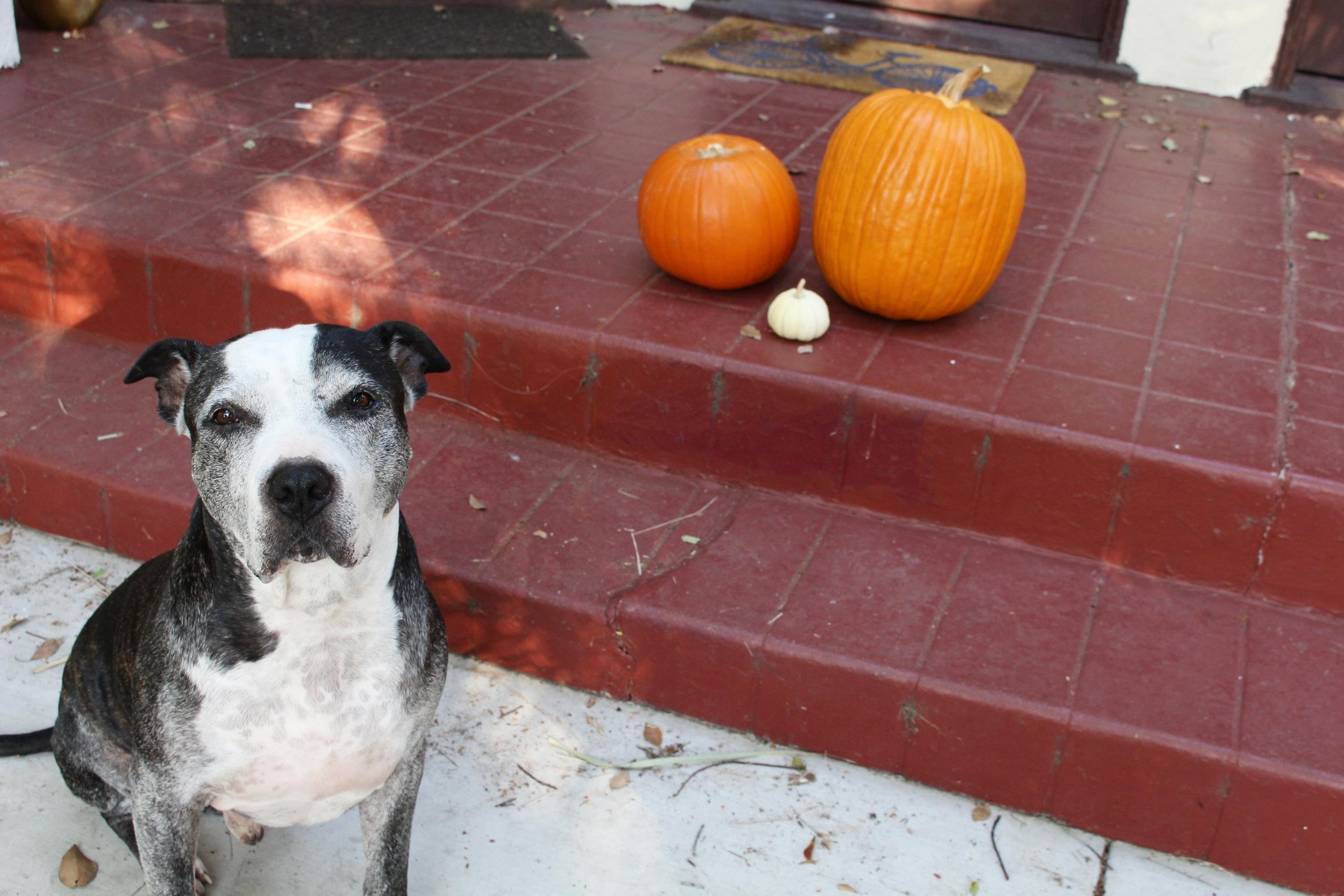 Casper_October