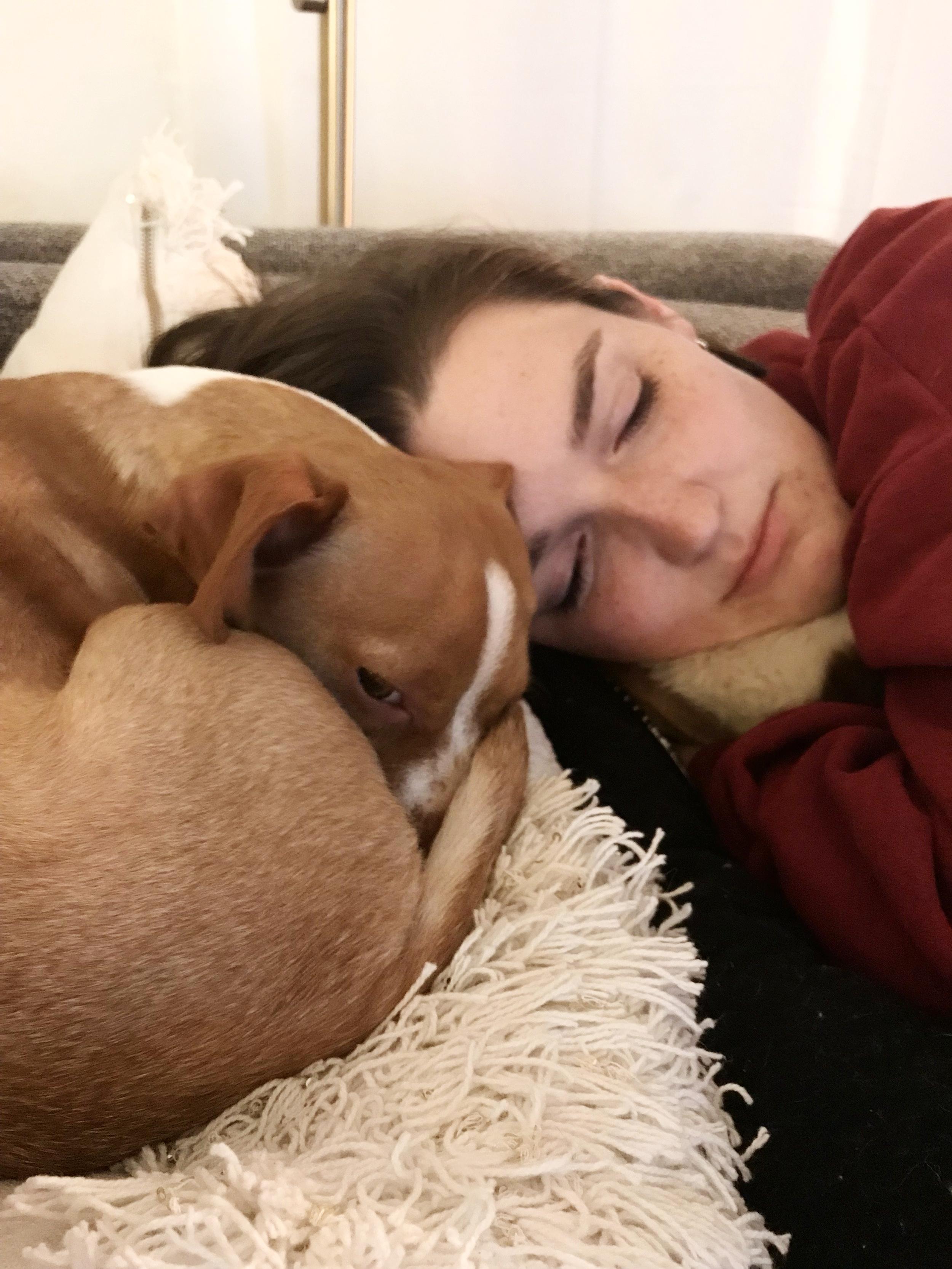 Bean_Sleepy_Dog