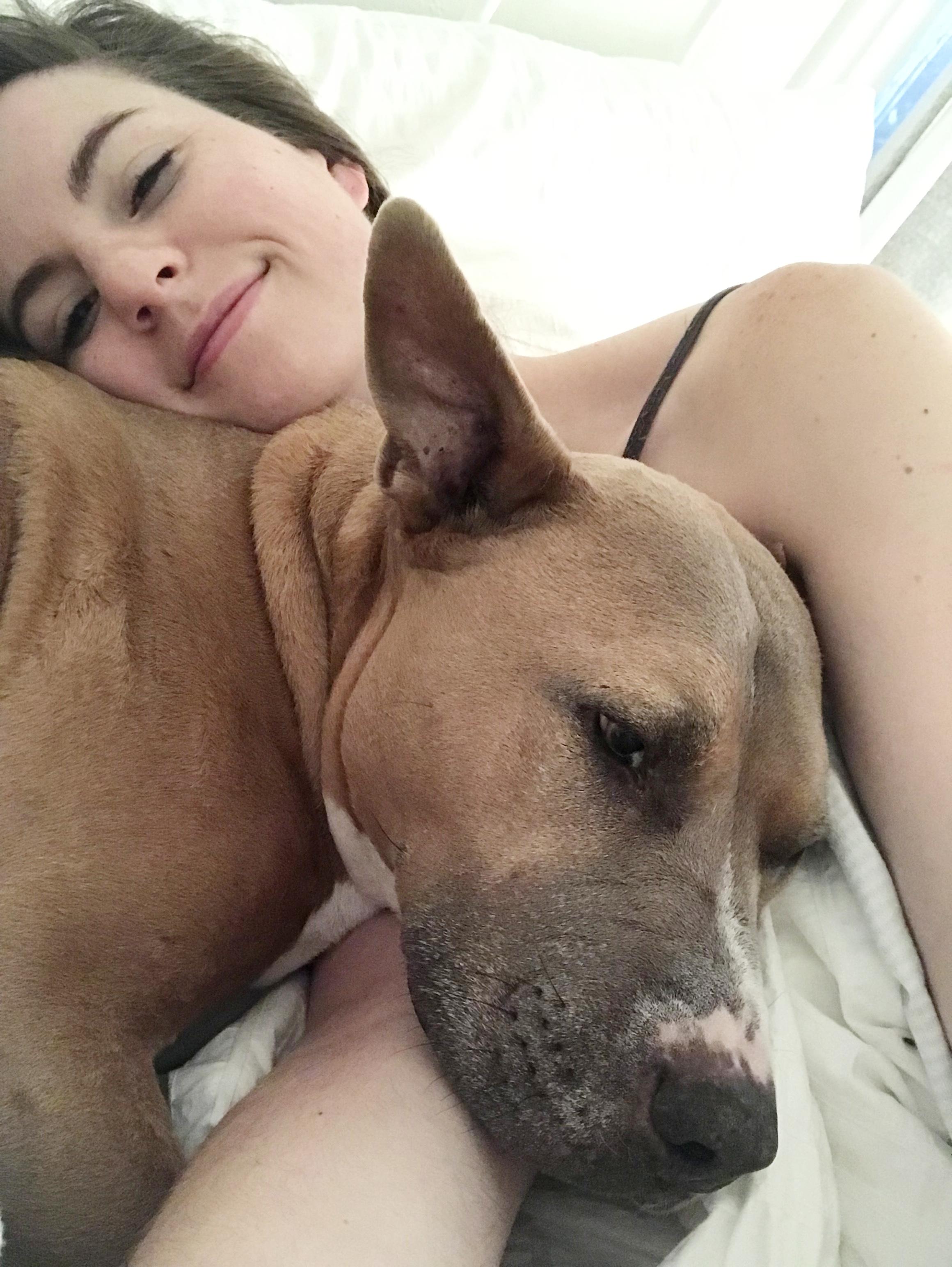 Snuggle_Pit_Bull