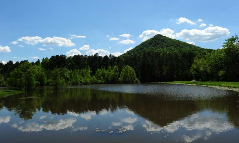 Photo via the  Pinnacle Mountain State Park website