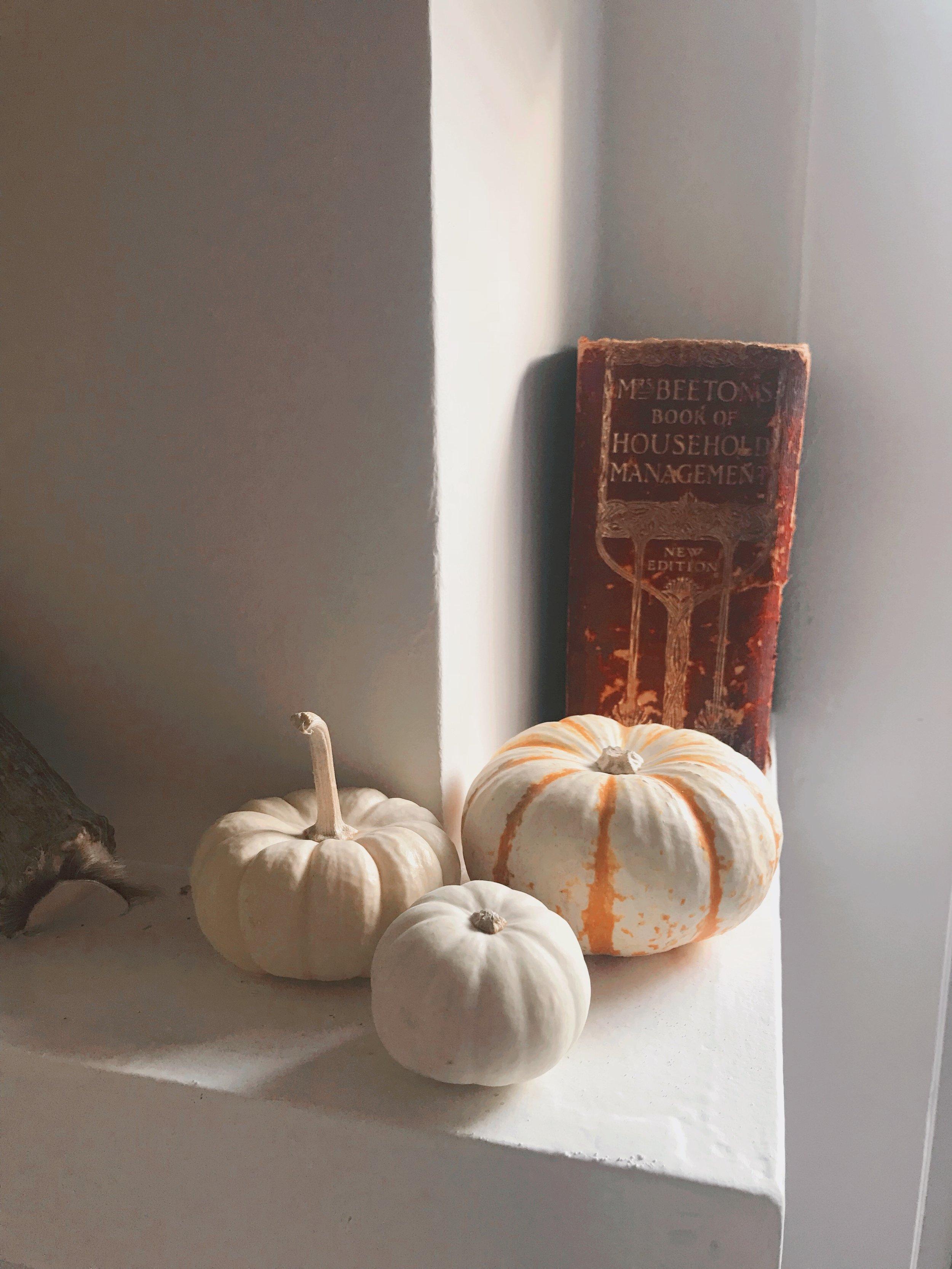 Pumpkin_Decorations