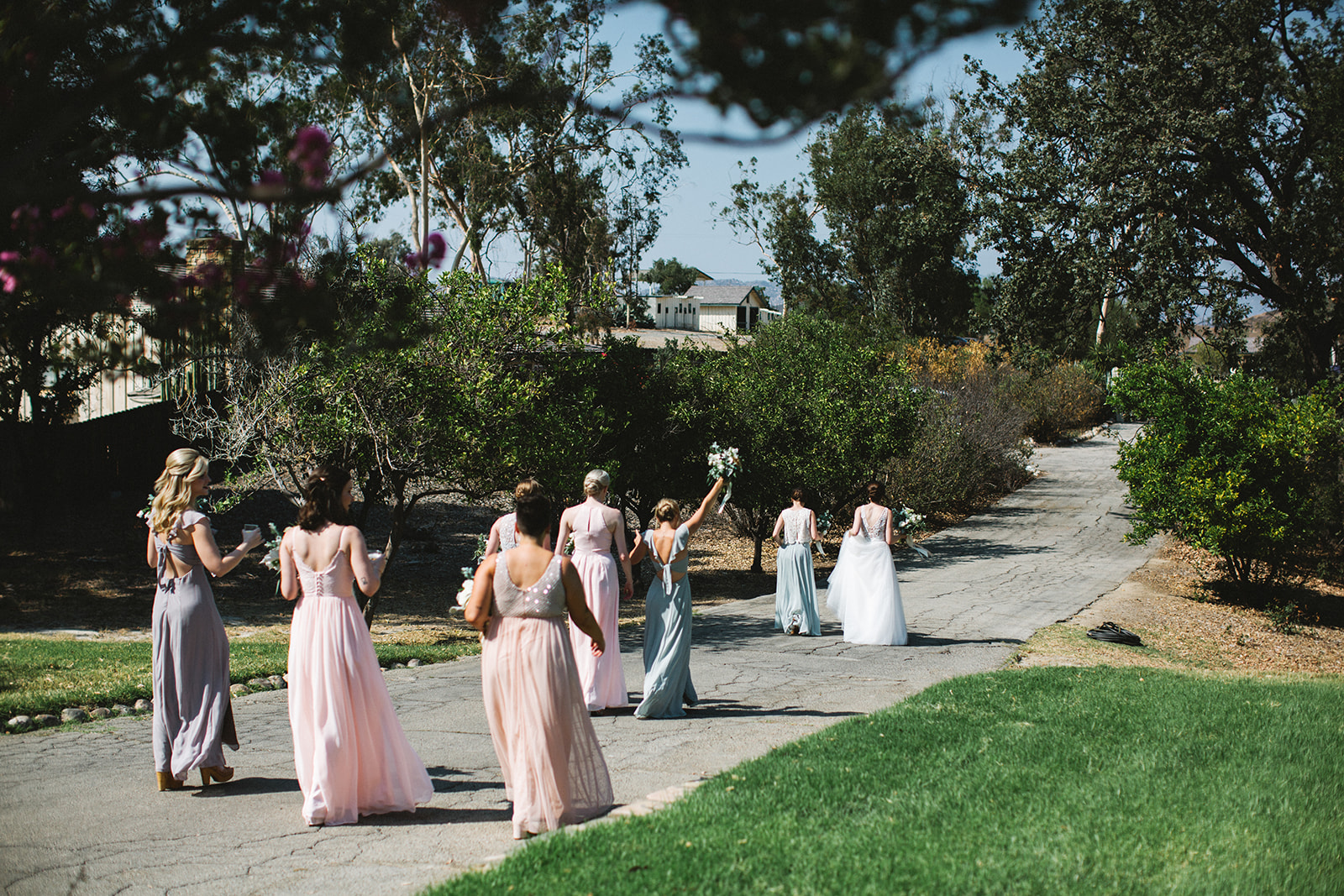 Bridesmaids_Walking