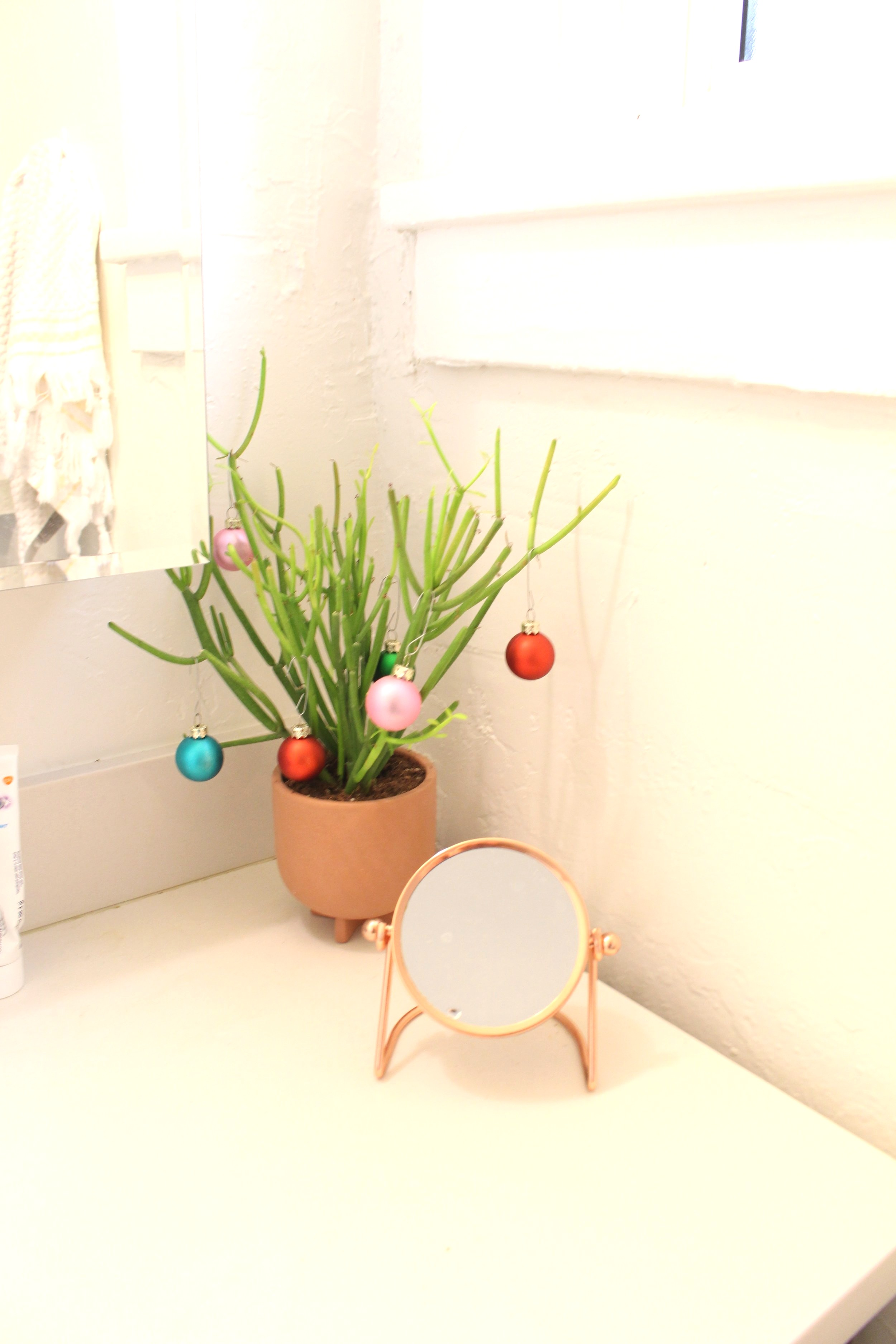 Christmas_Houseplant_Bathroom