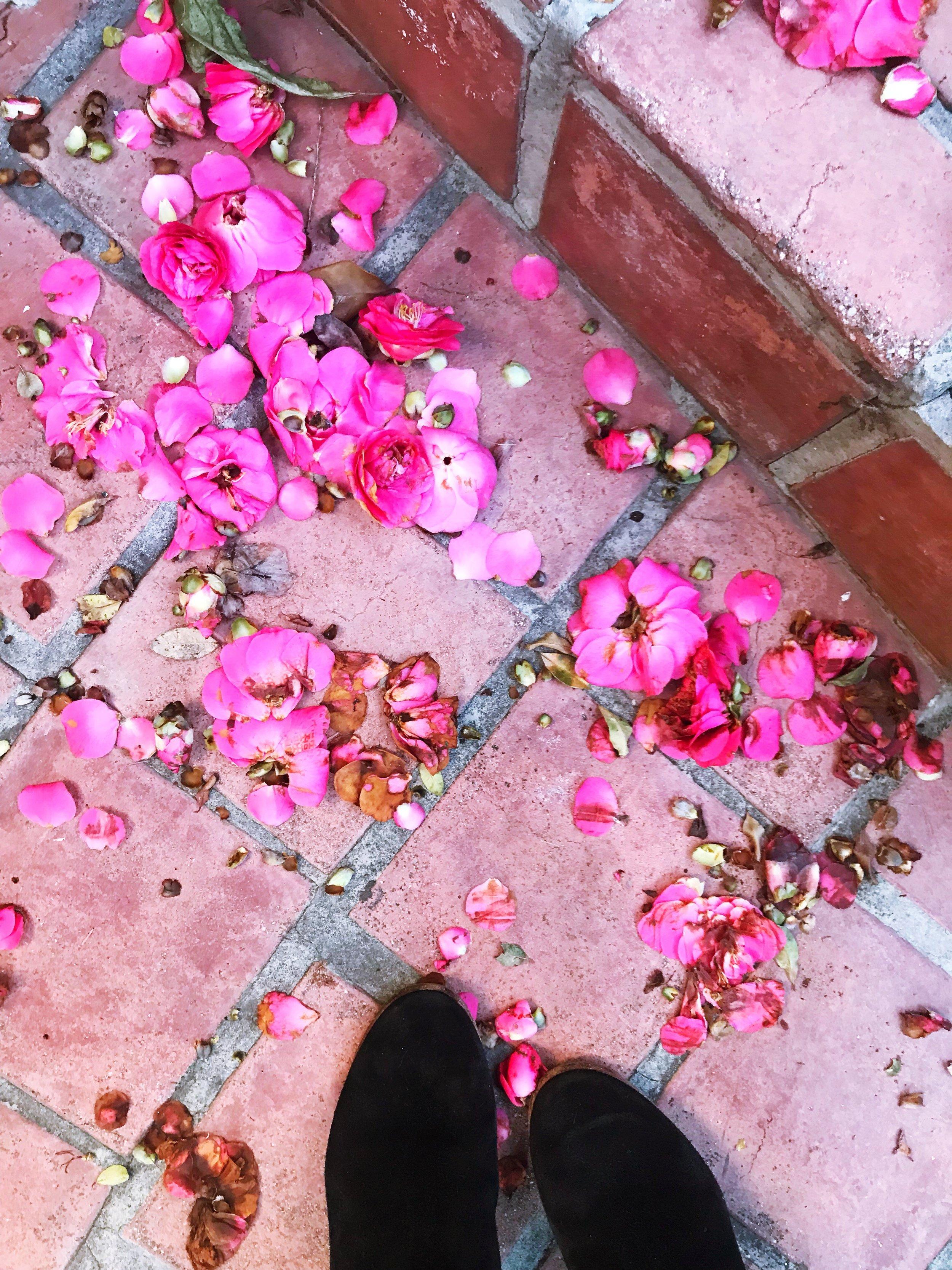 Flower_Confetti.JPG