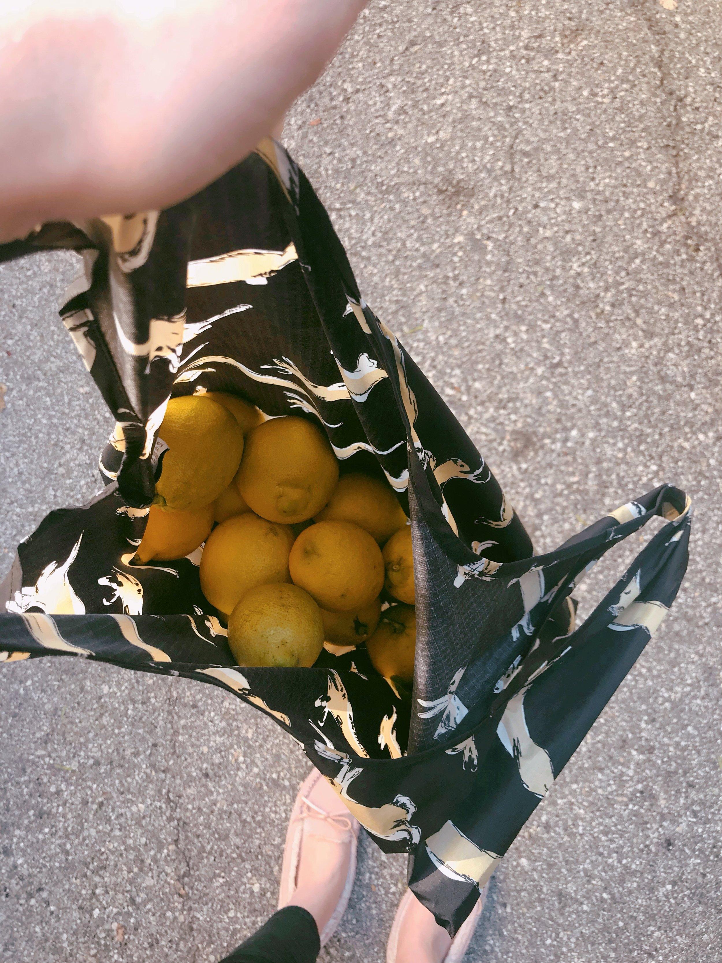 Bag_o_Lemons.JPG
