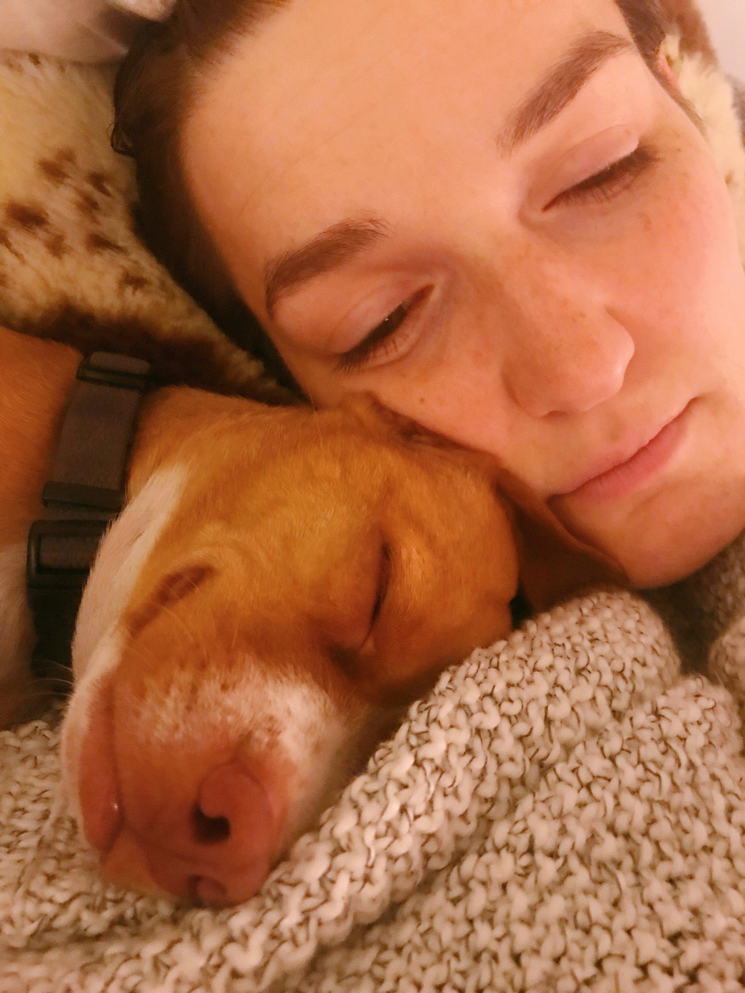 Puppy_Cuddles.JPG
