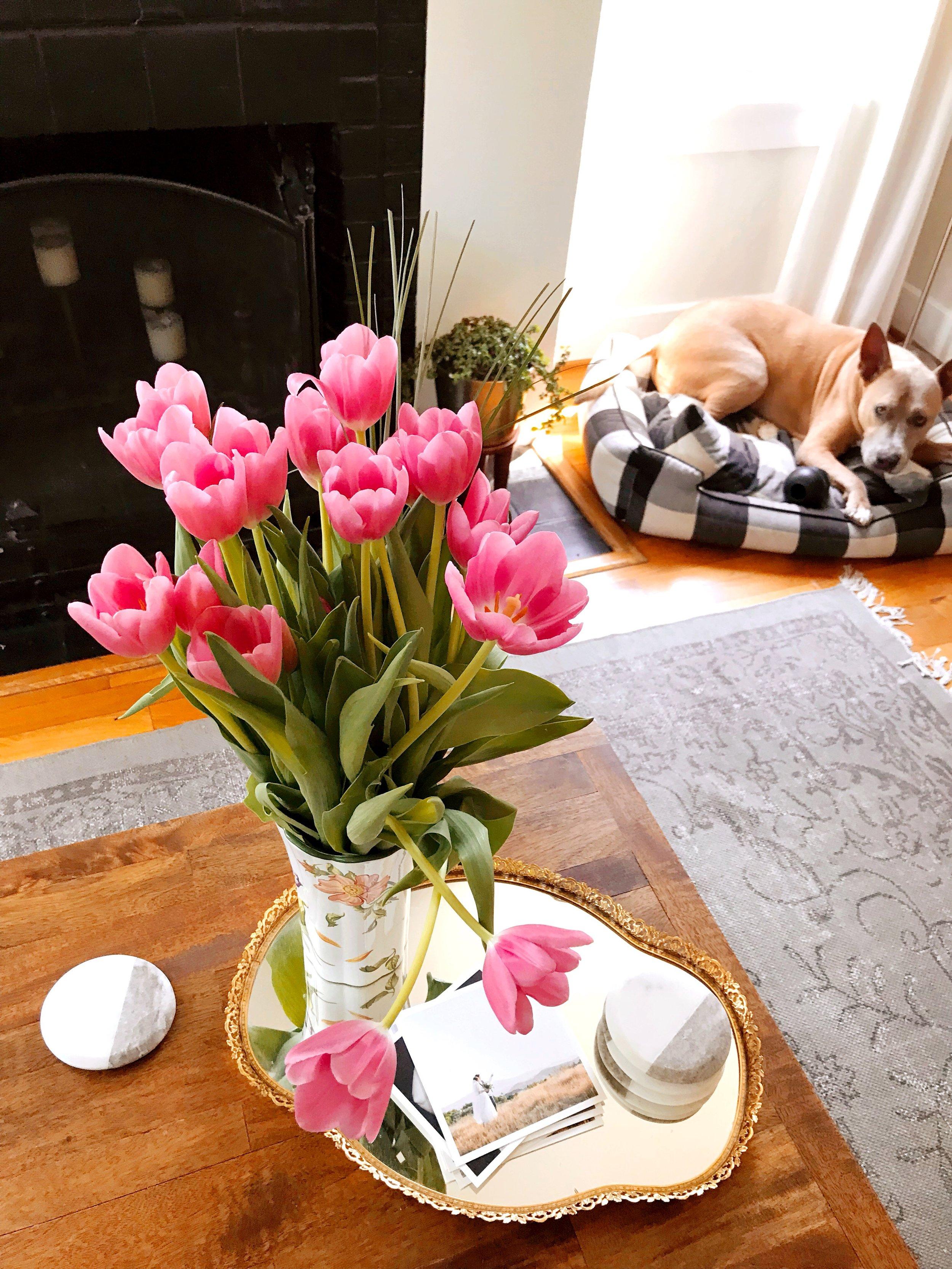 Pink_Tulips.JPG