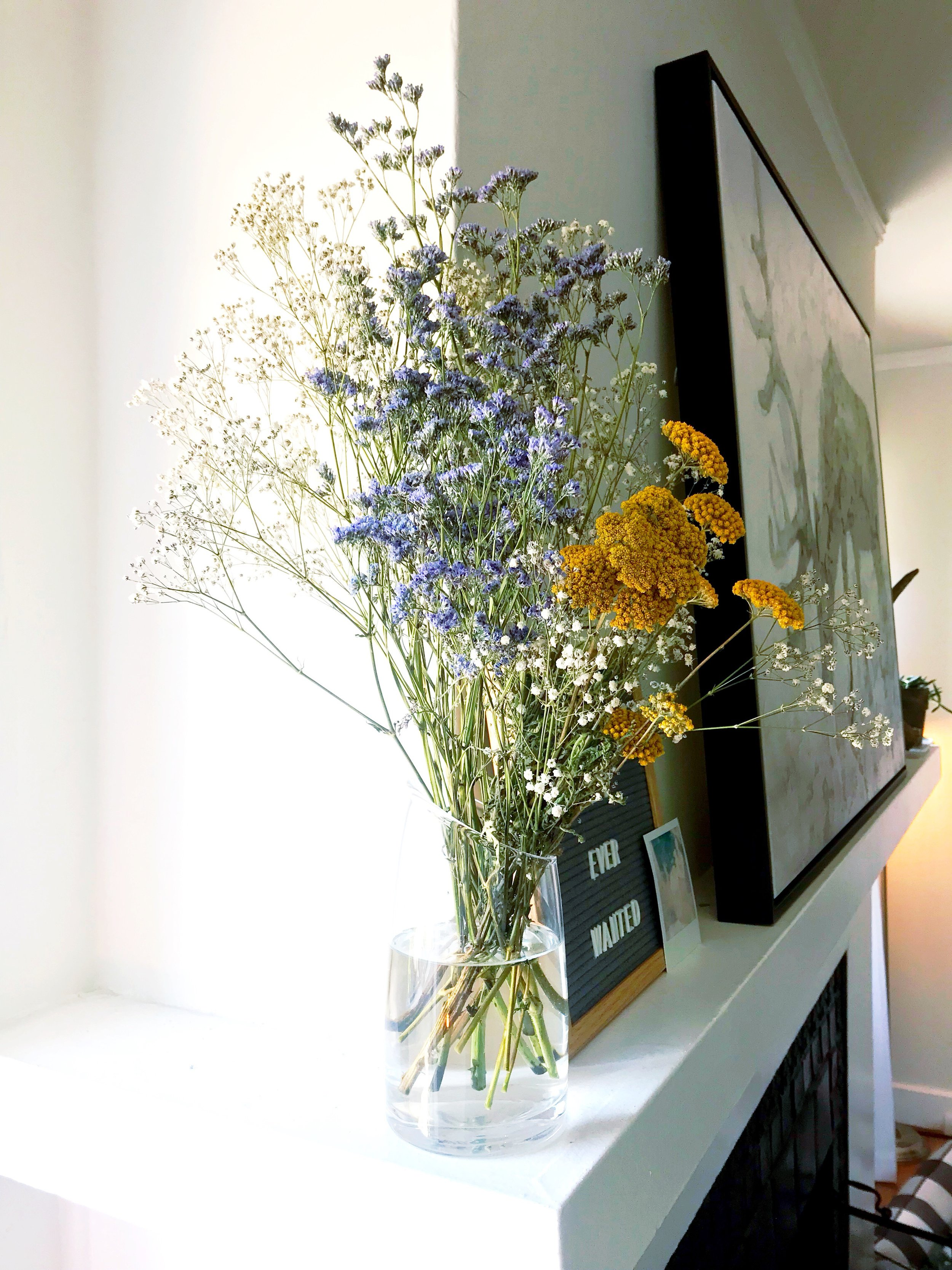 Dried_Wildflowers.JPG