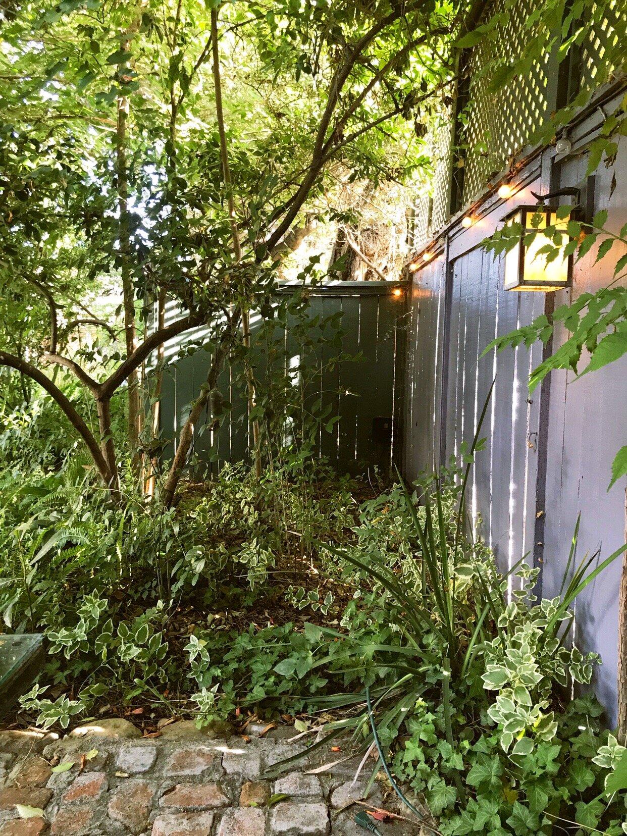 Lavender_Inn_Gardens.JPG