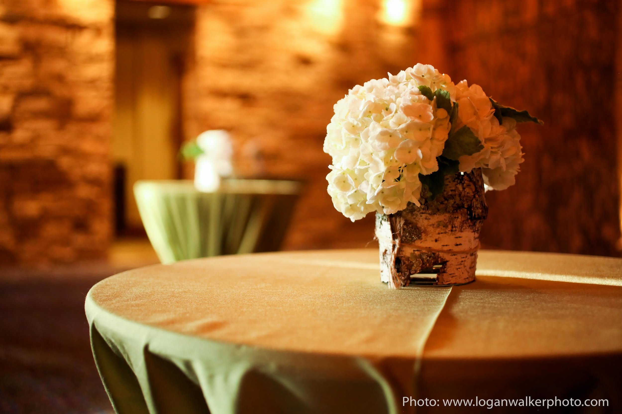 Green and White Summer Wedding Stein Eriksen Lodge-0582.jpg