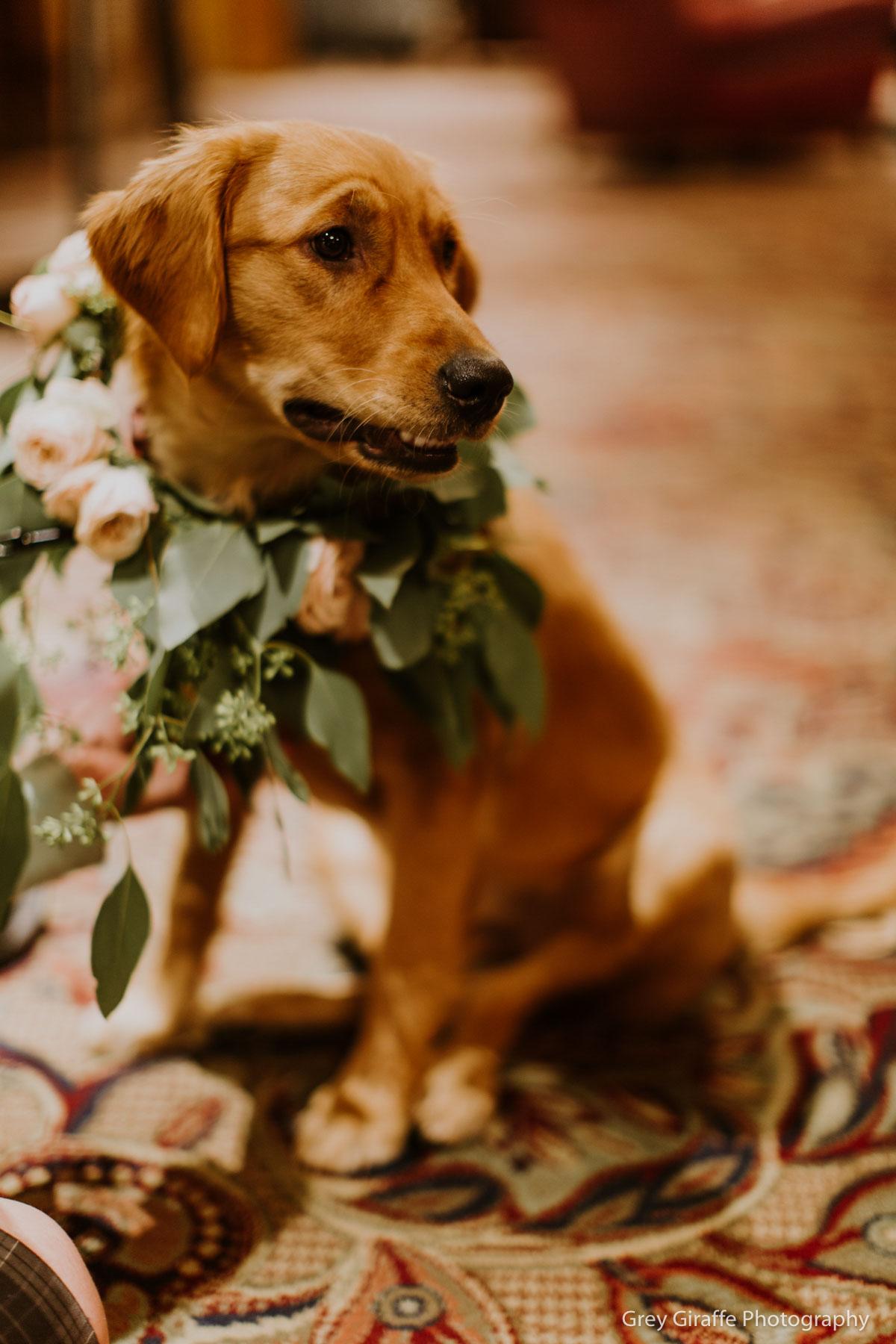 Best Park City Wedding Venue_Winter_Weddings_Stein_Eriksen_Lodge-166.jpg