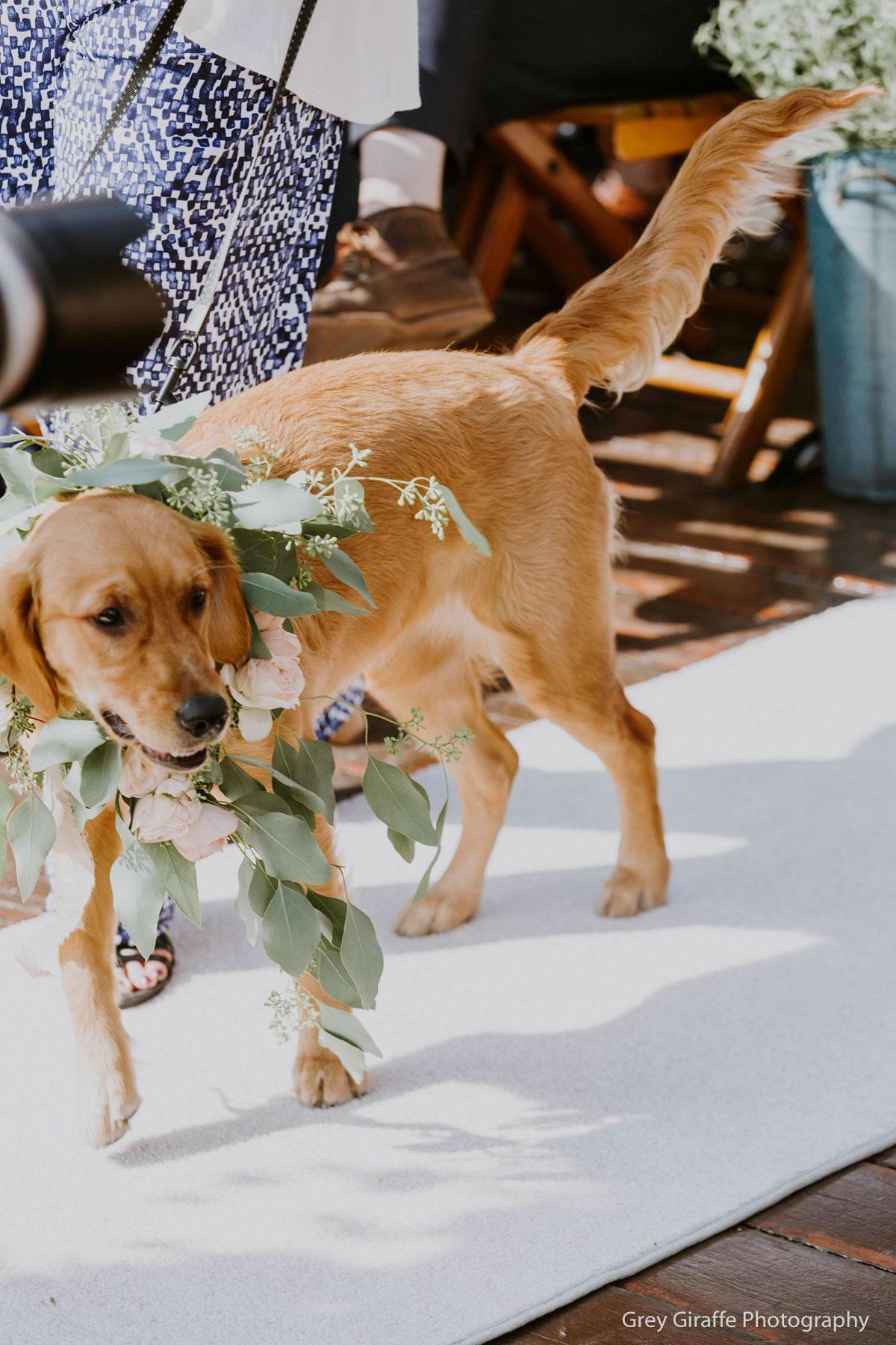 Best Park City Wedding Venue_Winter_Weddings_Stein_Eriksen_Lodge-197.jpg