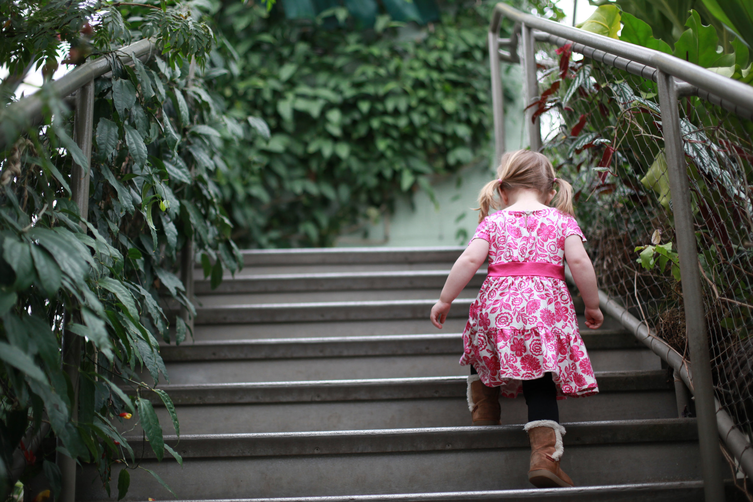 There is so much to explore at Garfield Park Conservatory.  Kids will love the Children's Garden.  It even has a big tunnel slide, worth the climb.
