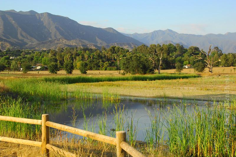ojai valley meadows preserve-L.jpg