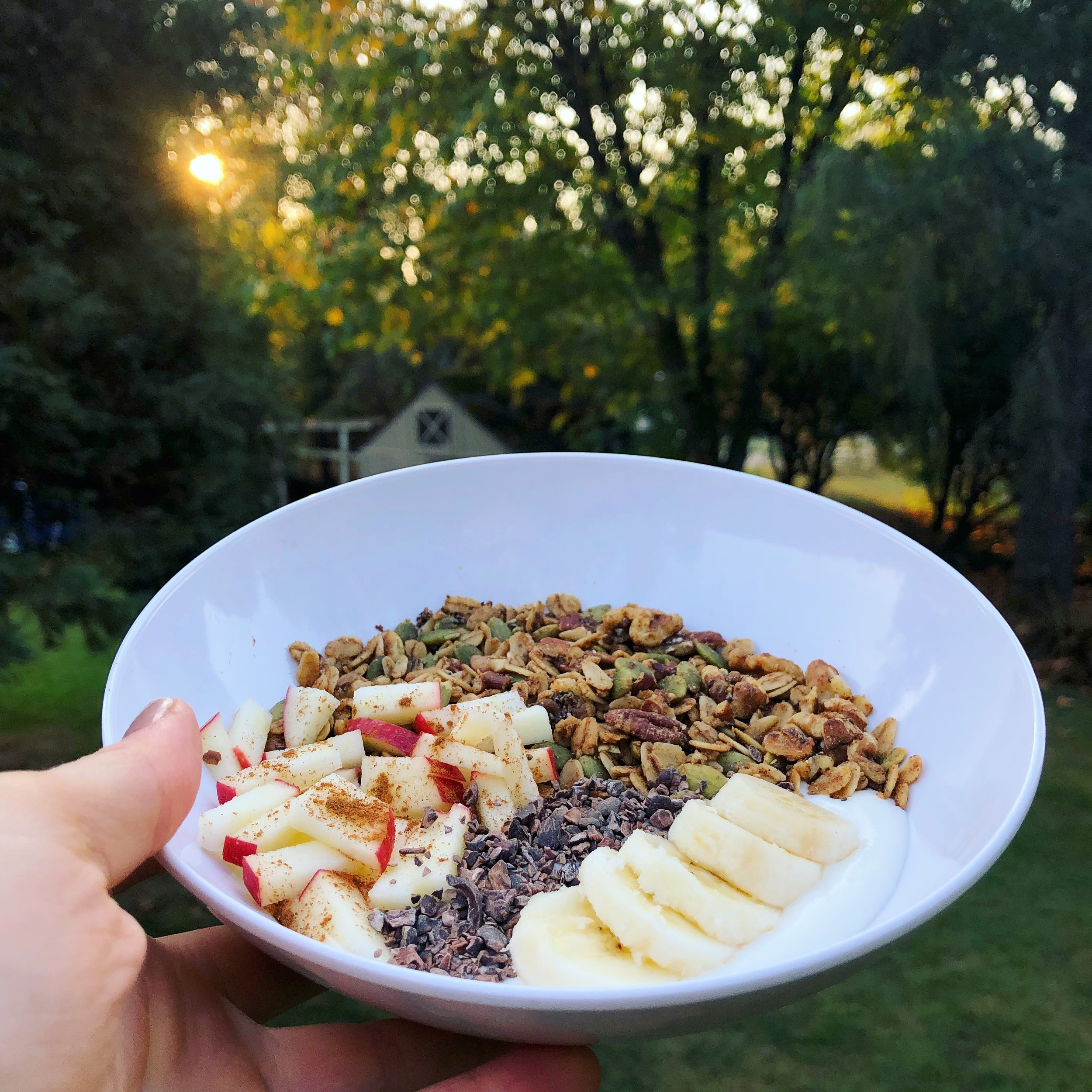 This granola makes the best yogurt bowl topping! As you can see here, I love it with apples, cocoa nibs, and bananas.